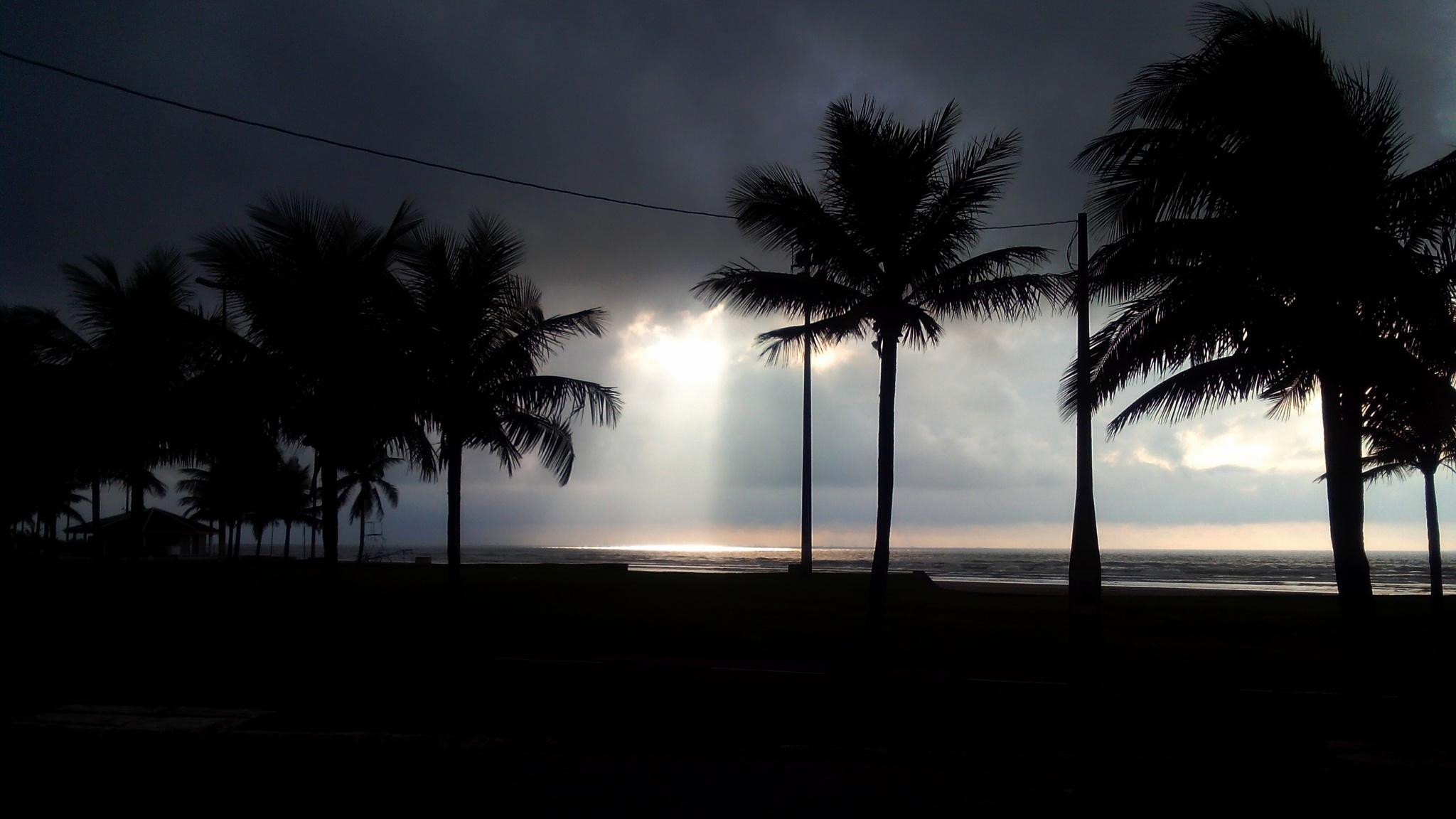 Sun Rays by Valmirez
