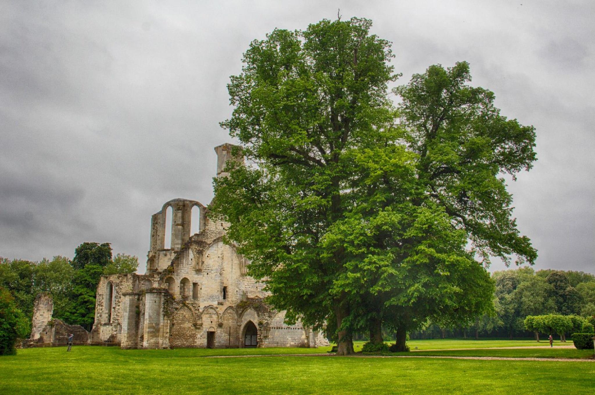 Abbaye de Chaalis by abeille77