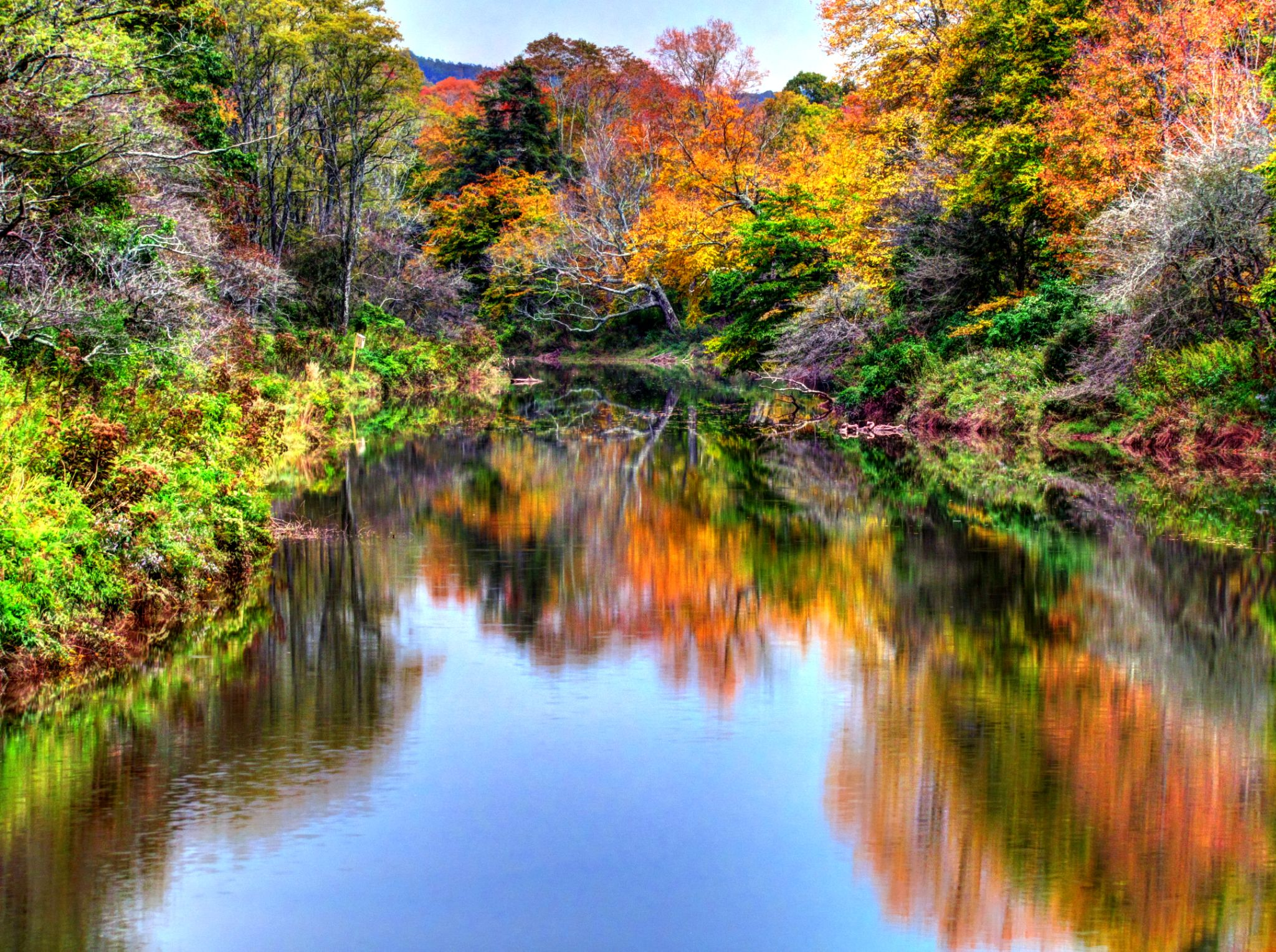 Autumn on Williams River by Michael Lough