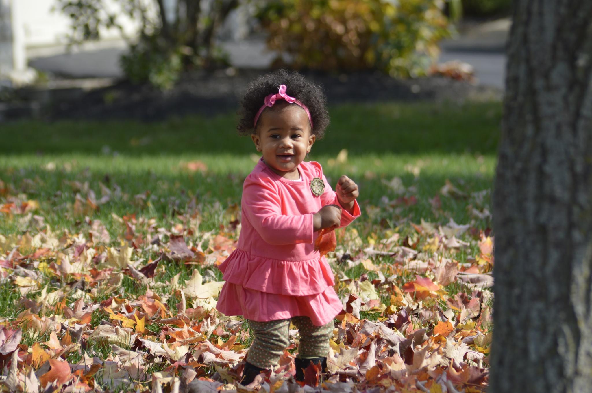 Enjoying the Autumn Leaves by Angela McIntosh