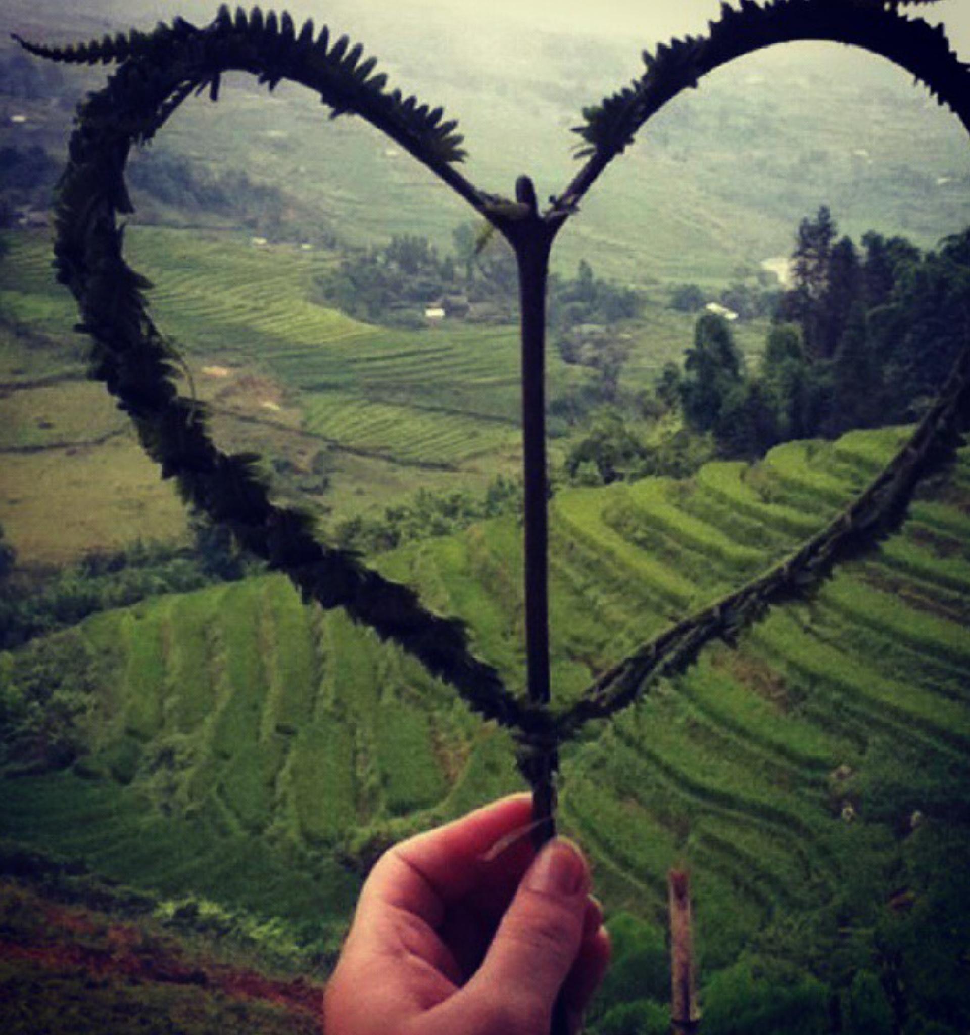 I Heart you Sapa by Hannah McDonagh