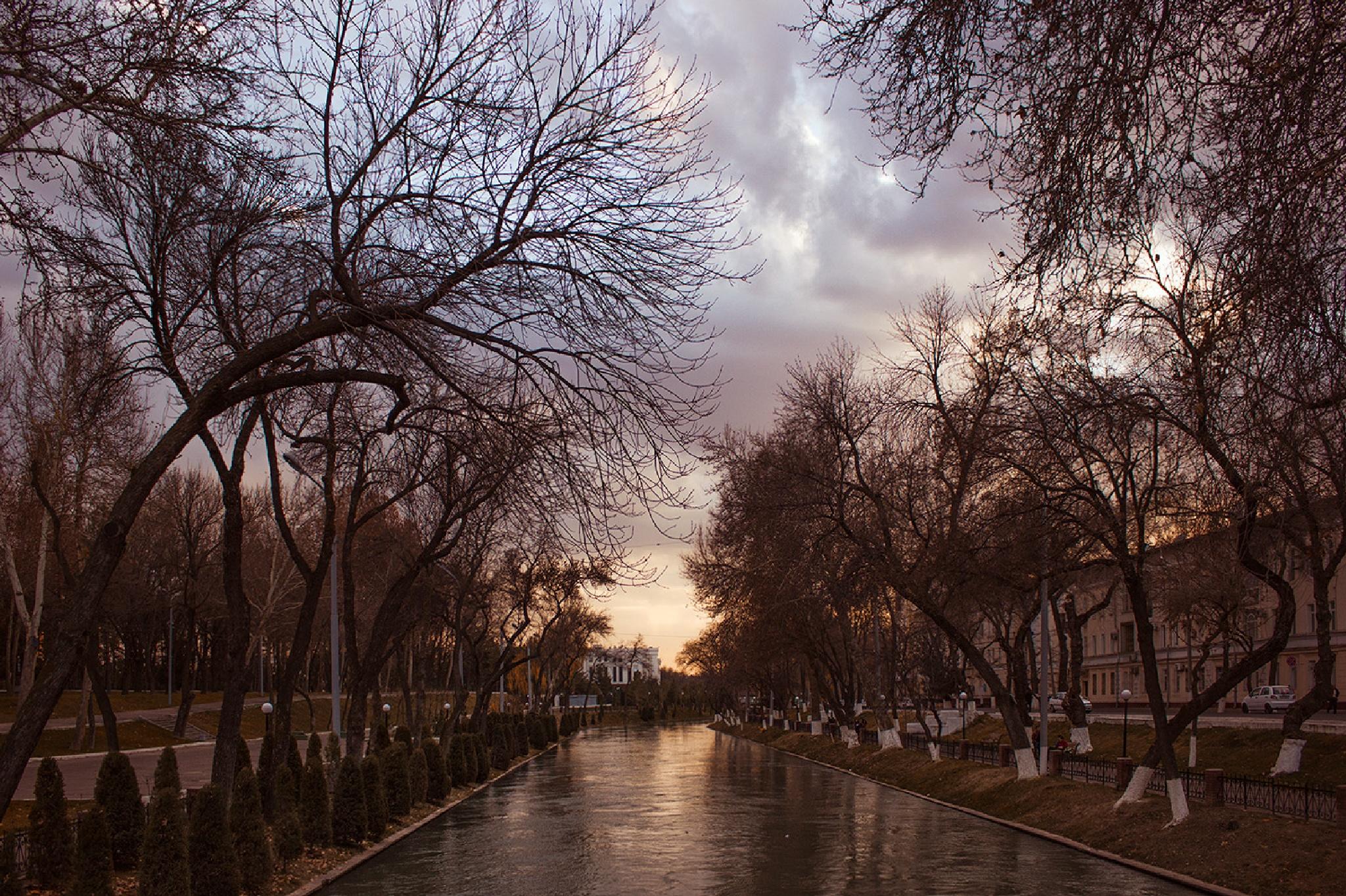 Tashkent by emelyanova2010