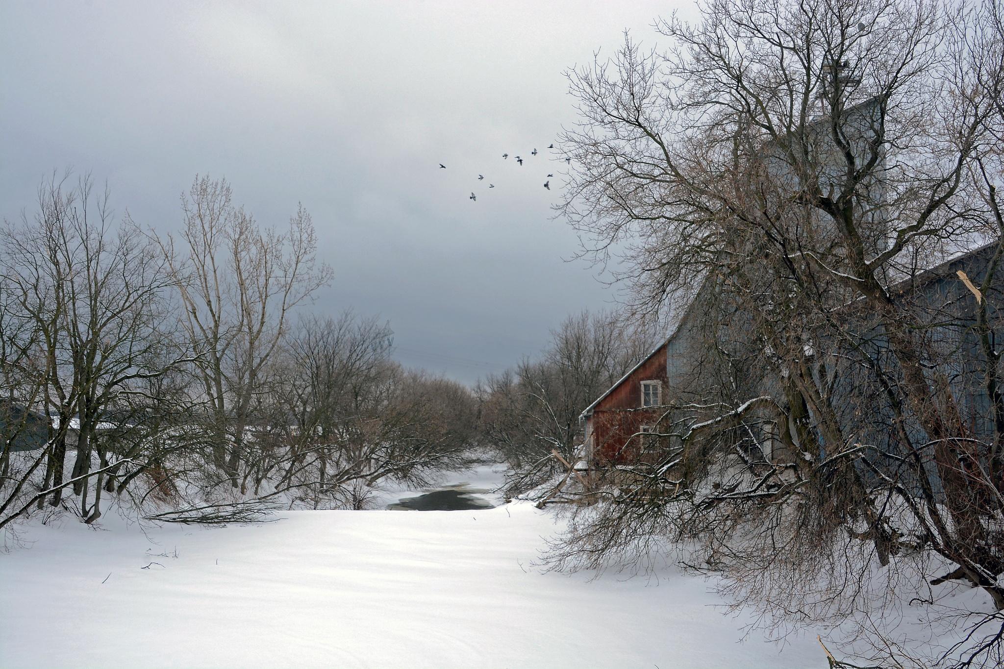 The Blue Mill by Antwann
