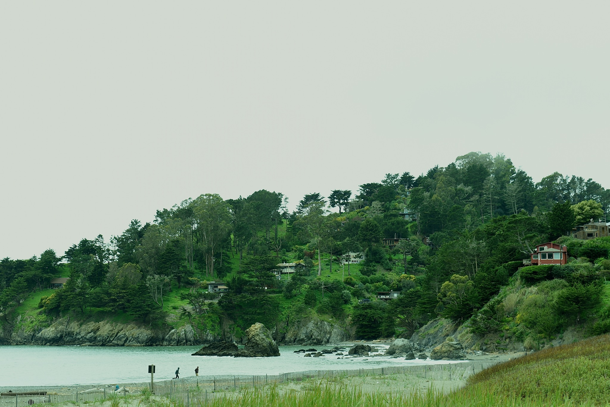 a small beach and houses nested among trees by Liliane Sticher