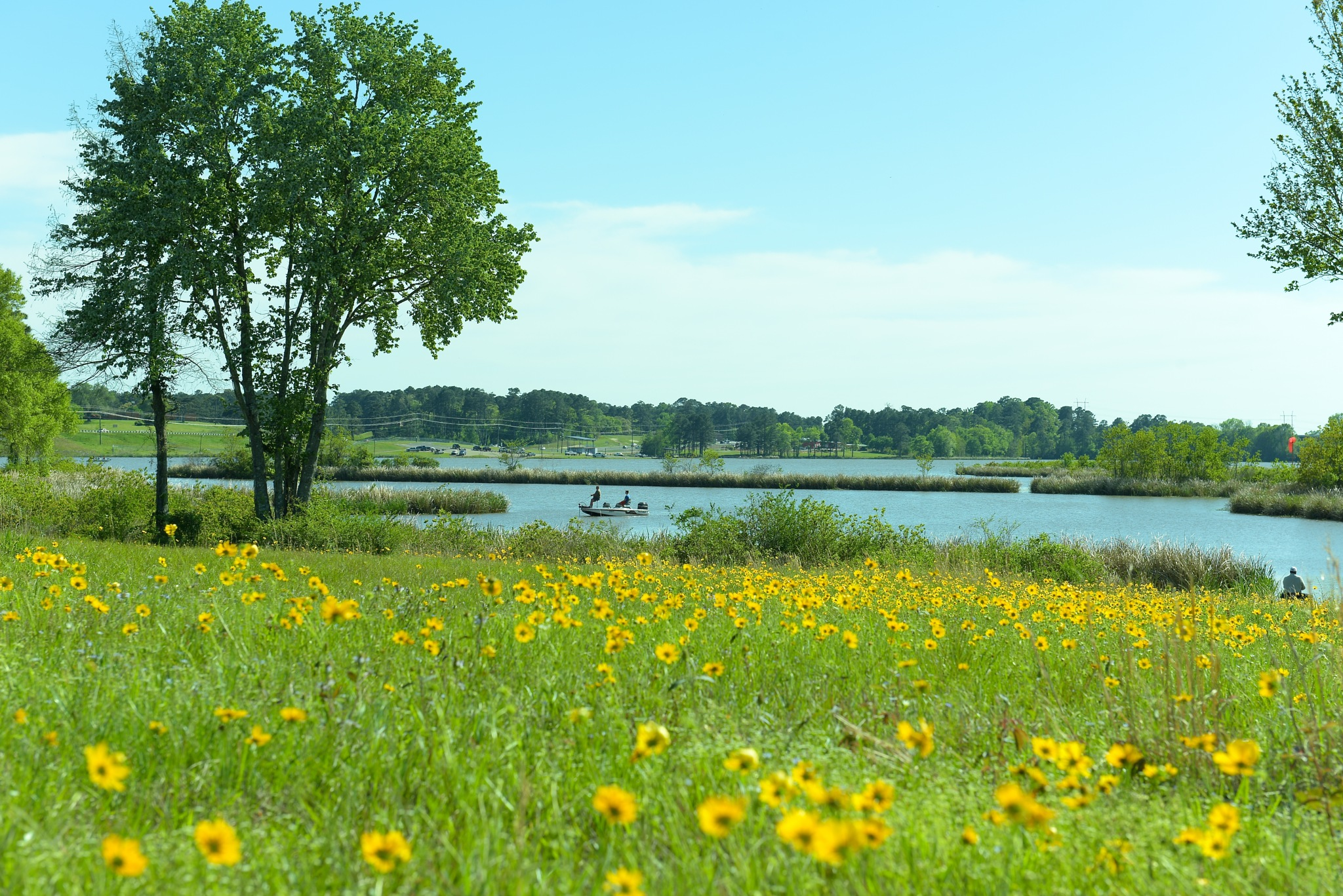 flowers and the Red River on a Spring day, March 30, 2018 by Liliane Sticher