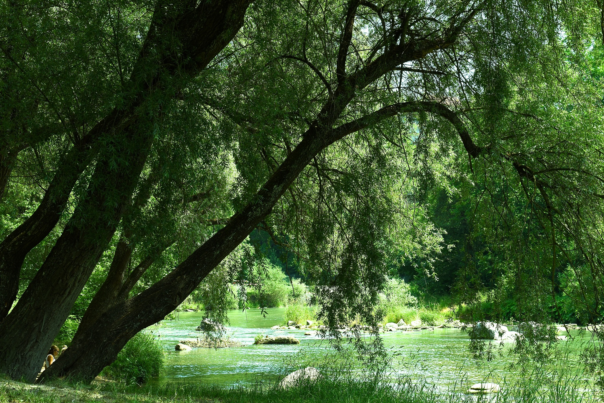 near the river, in between trees there is someone, look by Liliane Sticher