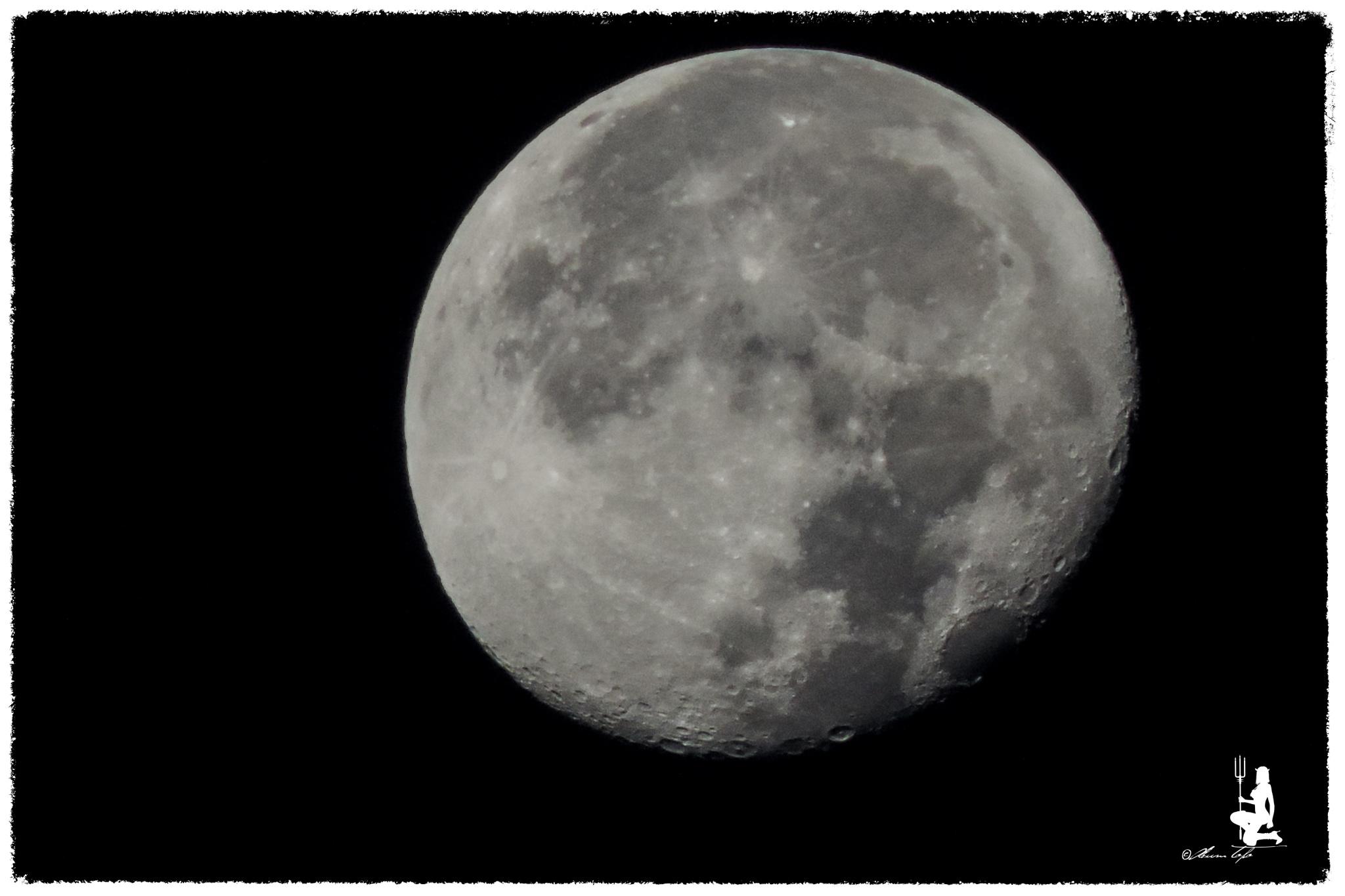 Luna llena  by Sergio Franco Topo