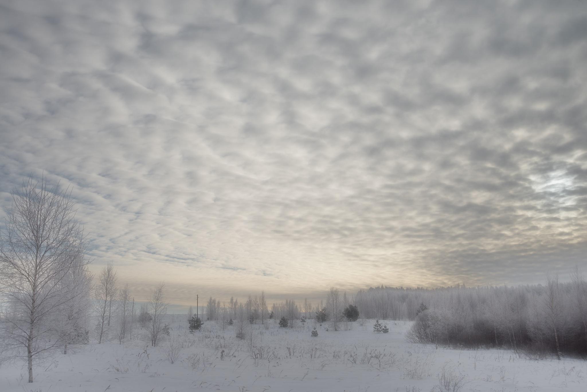Зимнее утро by kulishov315