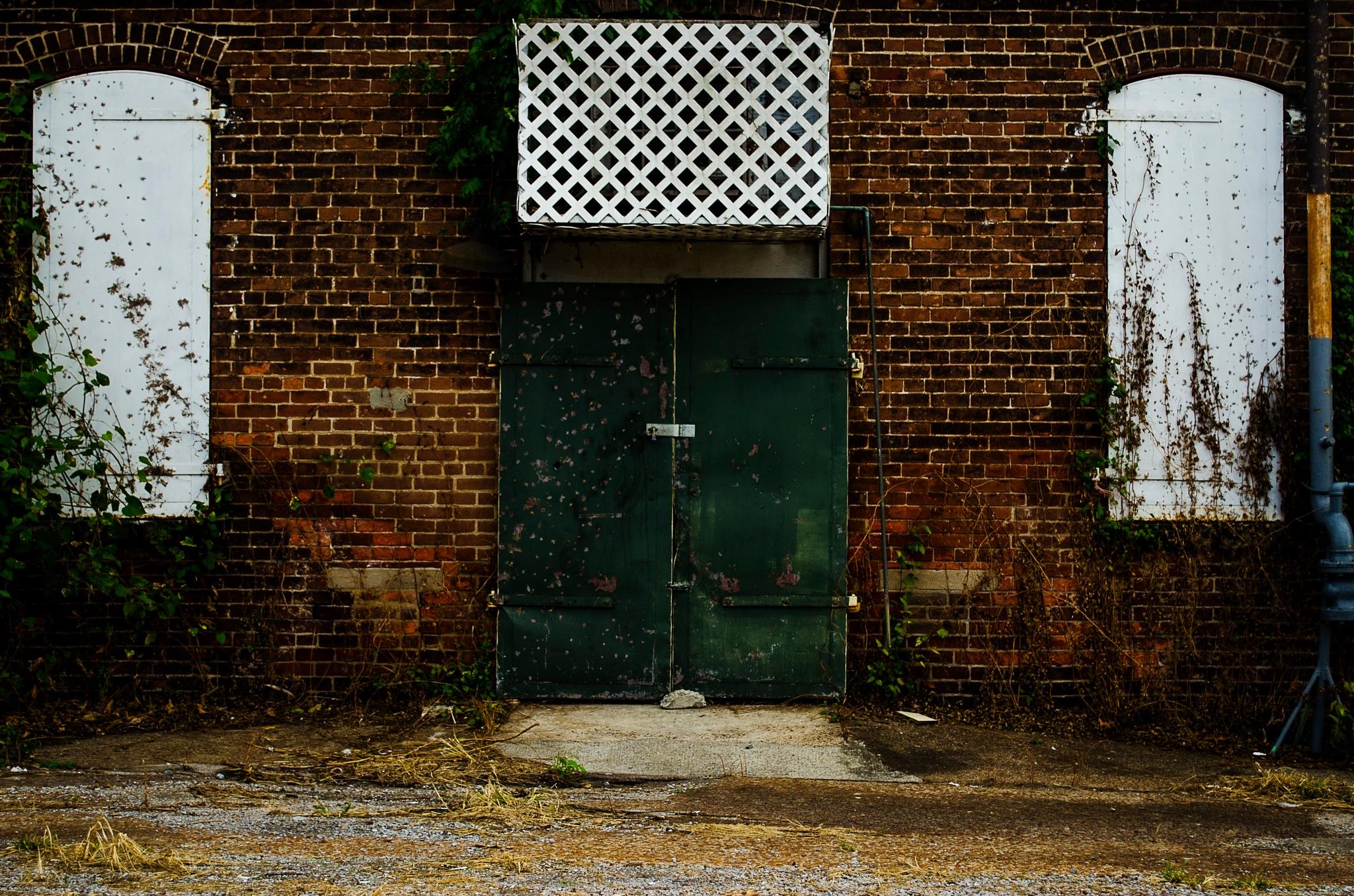 Green Door by jcates86