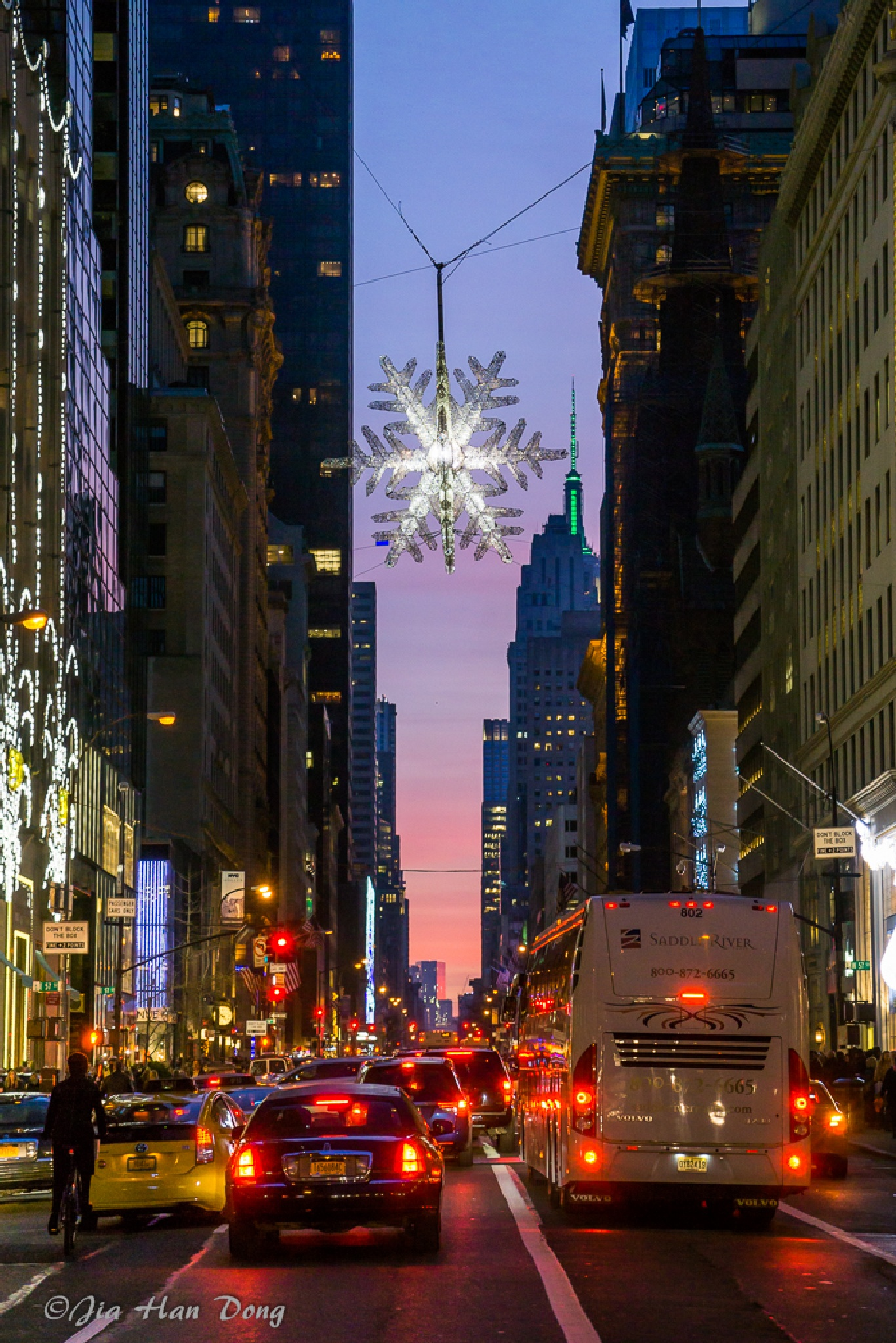 Xmas lights in NYC by Jiahan Dong