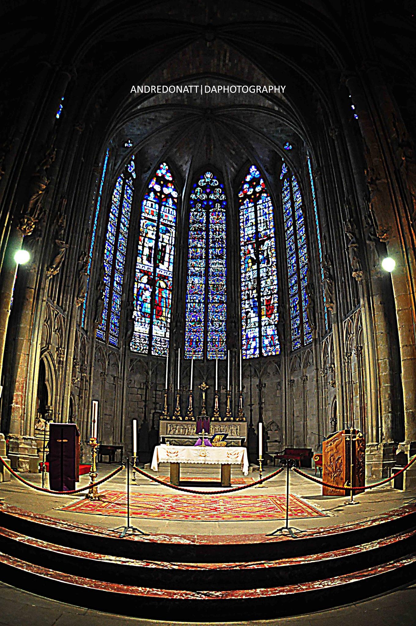 Cite de Carcassonne - Catedral by Andre Donatt