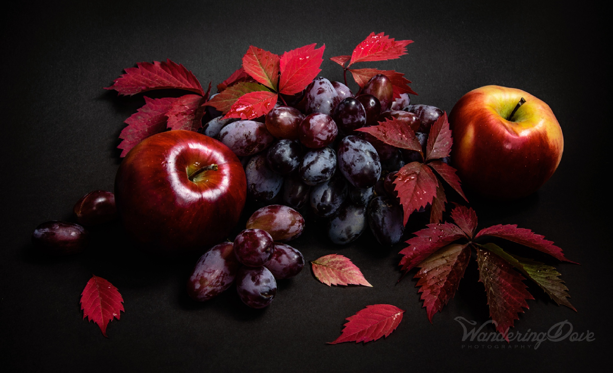 Autumn leaves with grapes and apples by Wandering Dove Photography