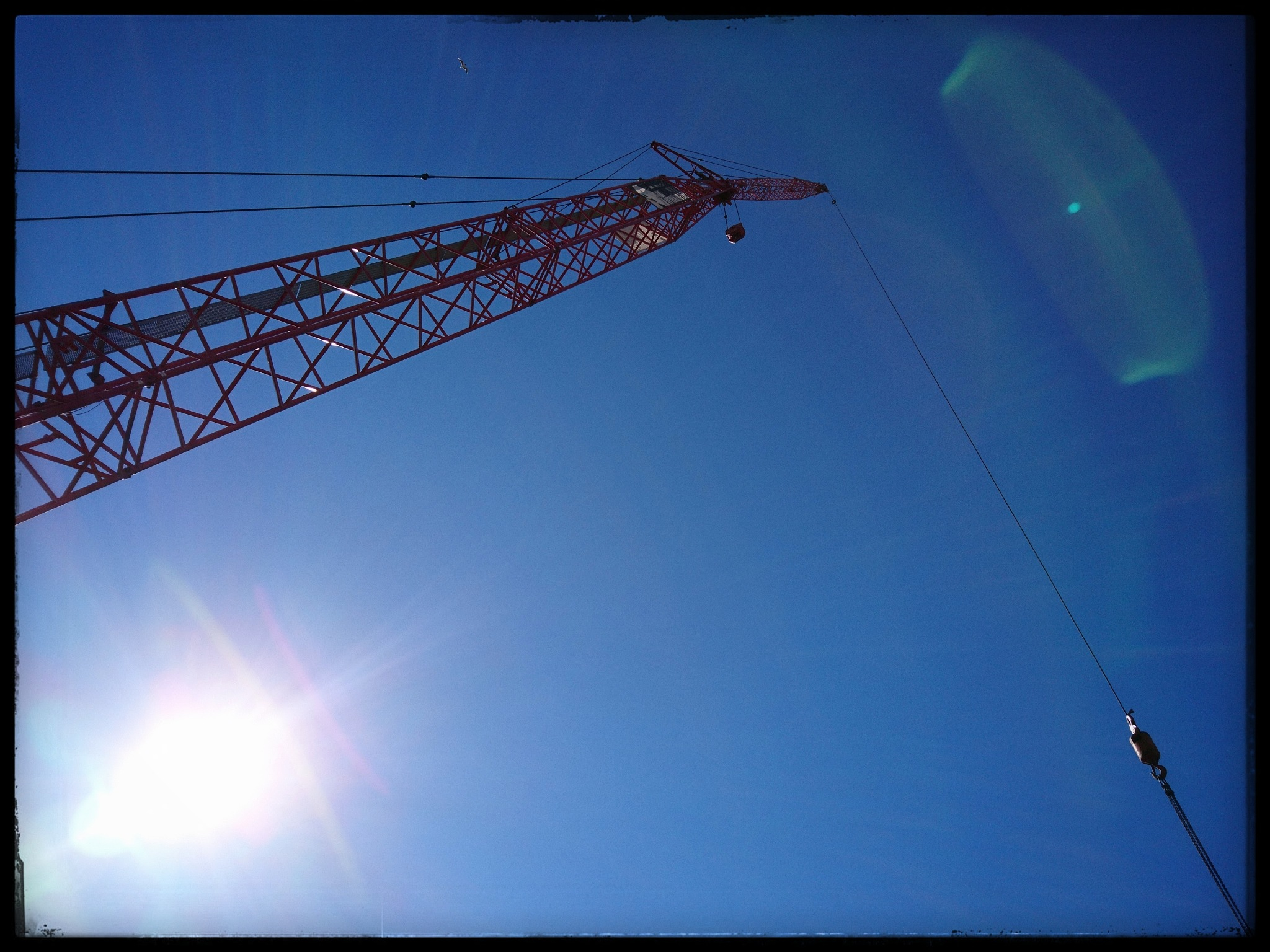 Crane  by Sami Serola