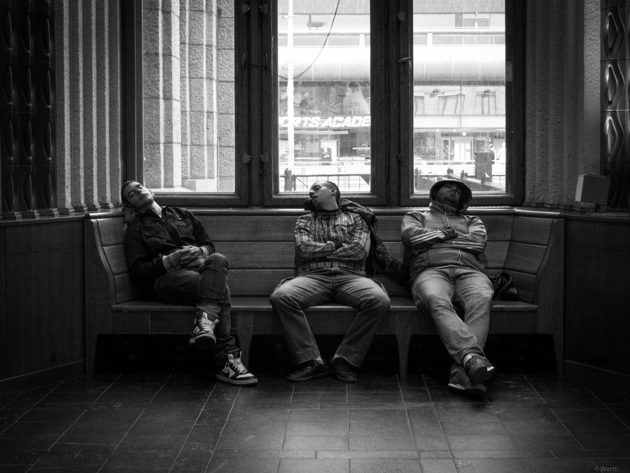 taking a nap #4 by wertti