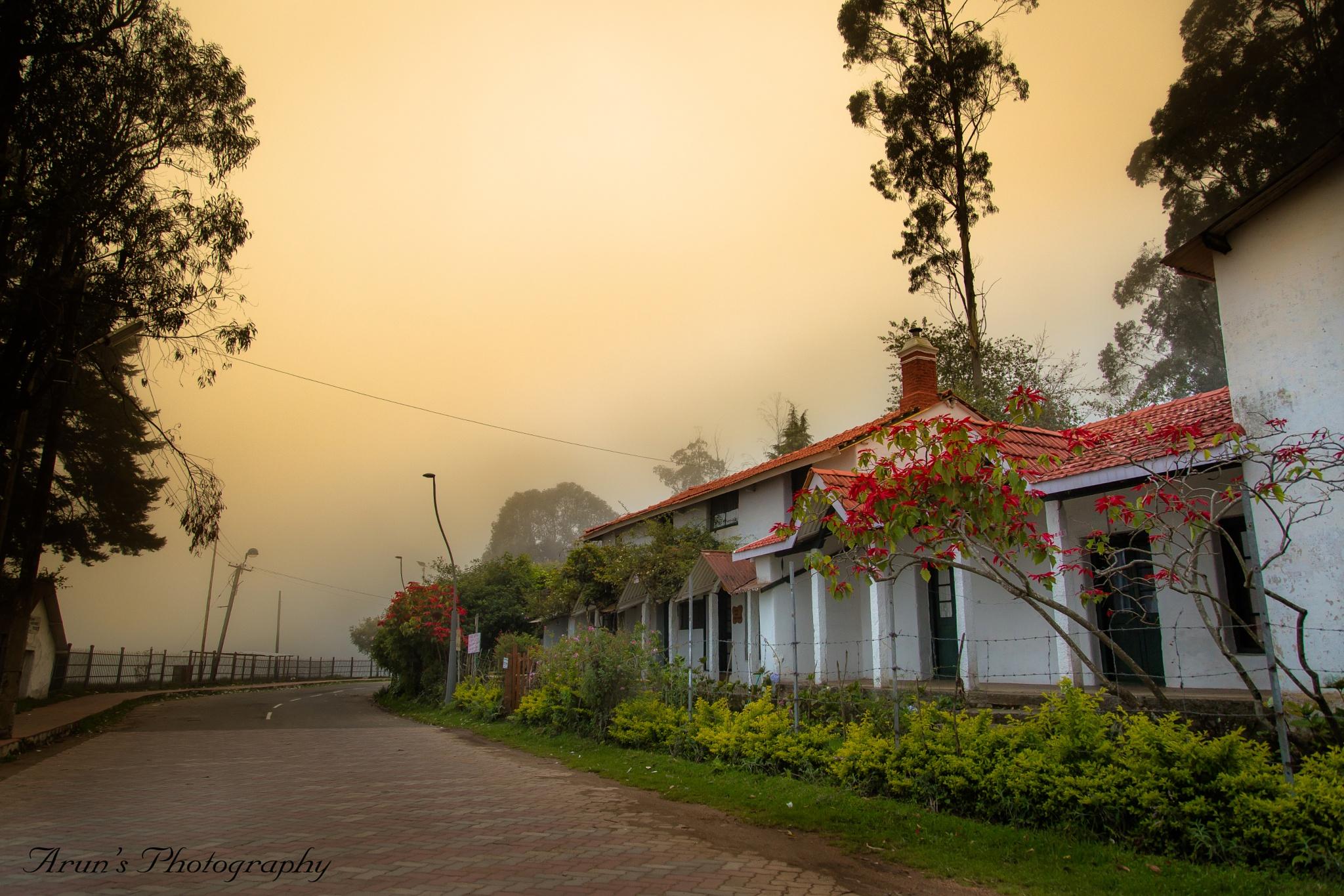 pleasant evening at kodaikanal..INDIA. by Arun Kumar