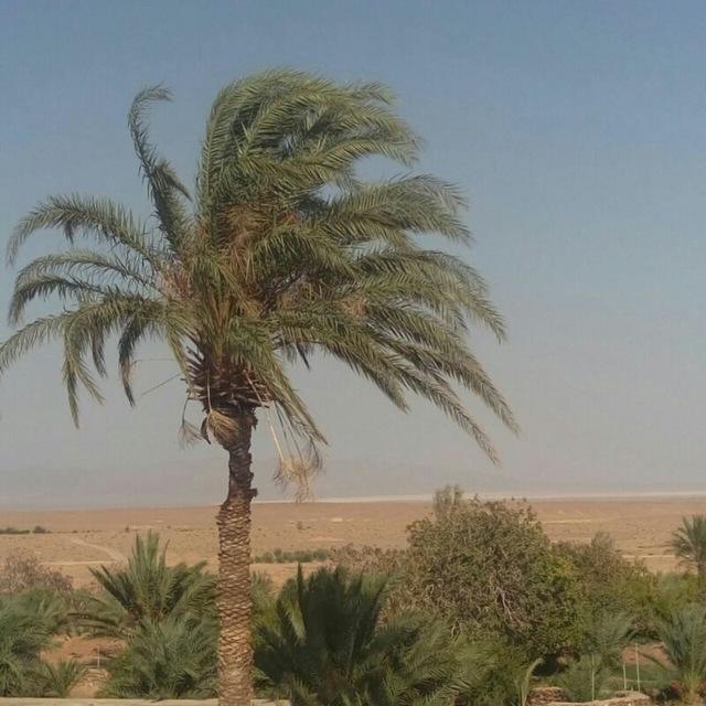 inverno nel deserto by alishaker98229241