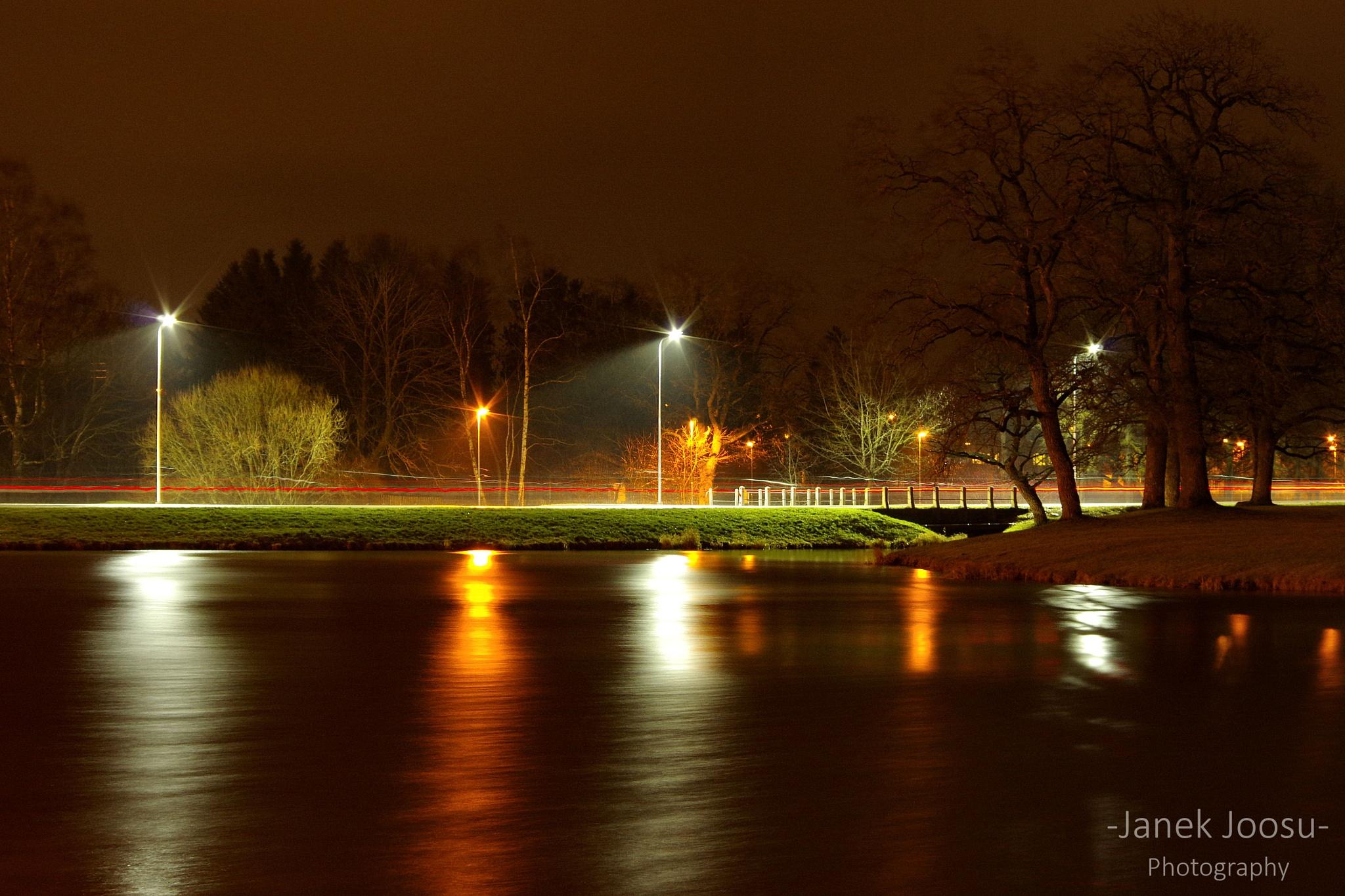 Light lines  by Janek Joosu