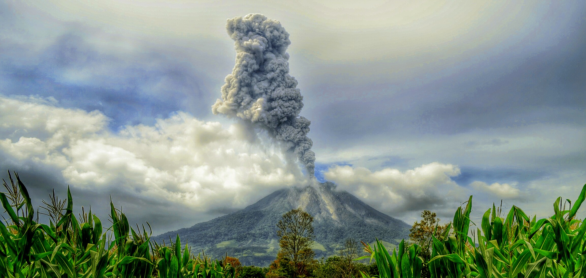 Sinabung Volcano by Kriswanto Ginting's