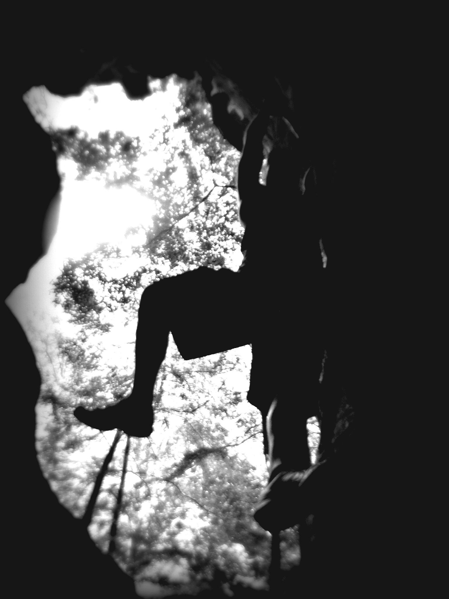 Silhouette by Melissa Berro