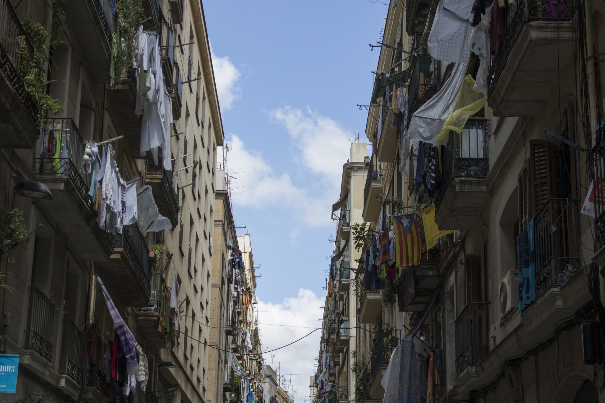 Barcelona at Her Best  by Tarah Sloan