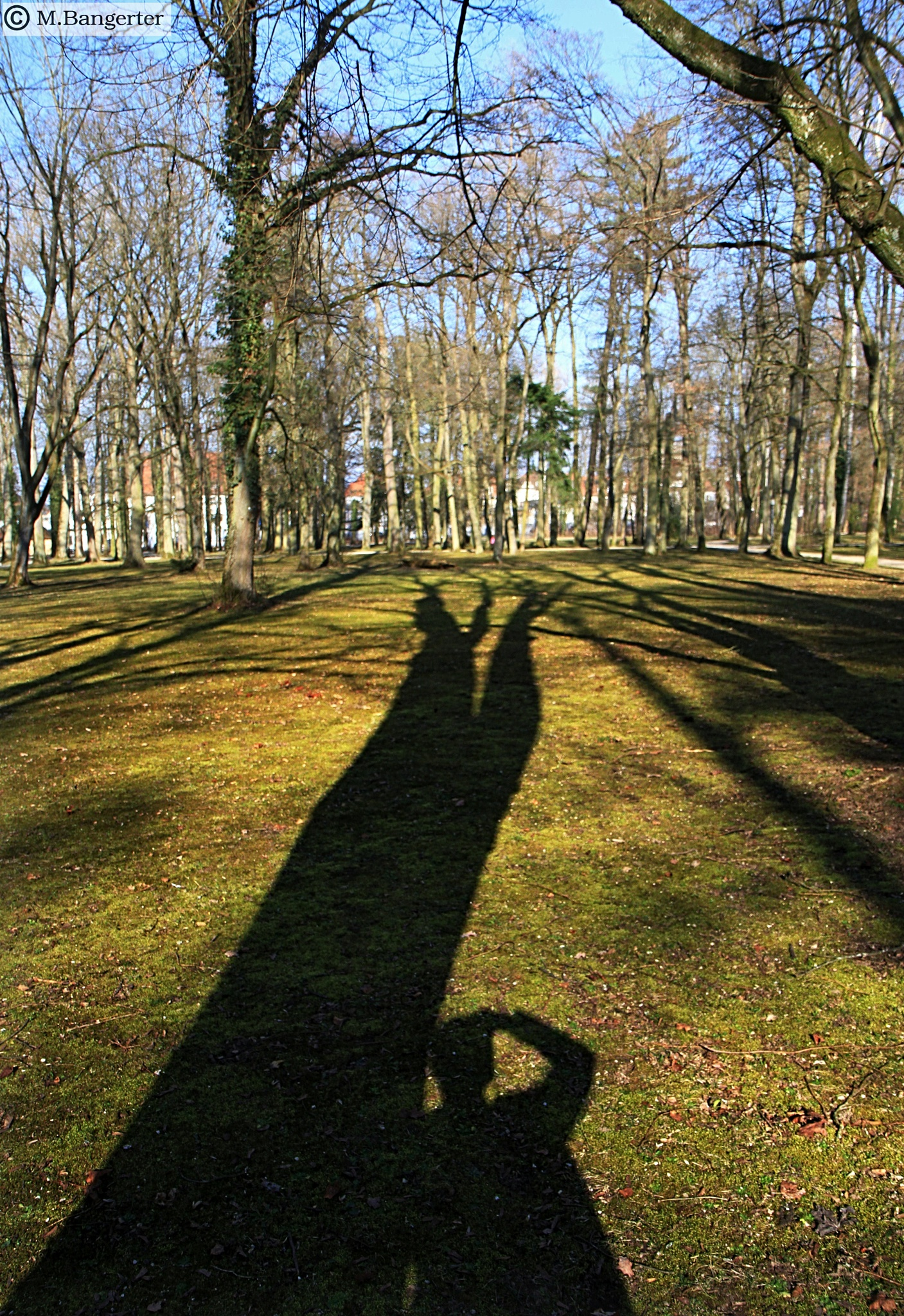 The shadow of the photographer by Michael