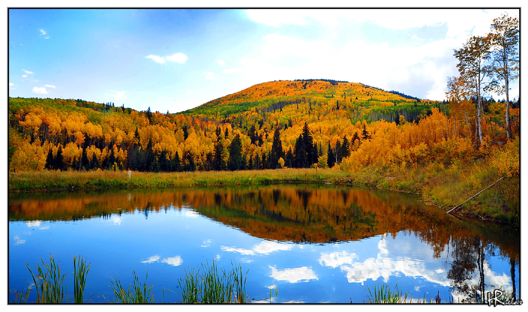 Fall Colors by Hugo