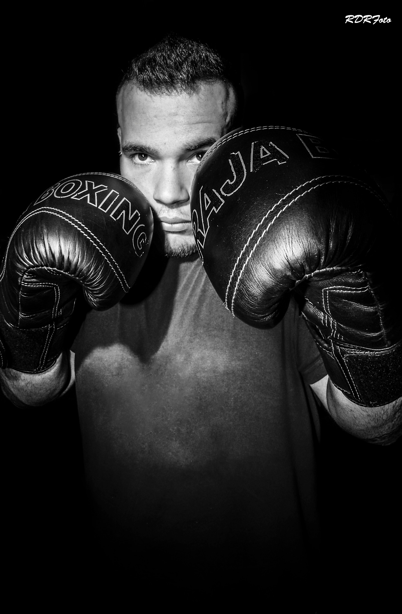 Boxer by RDR_Foto