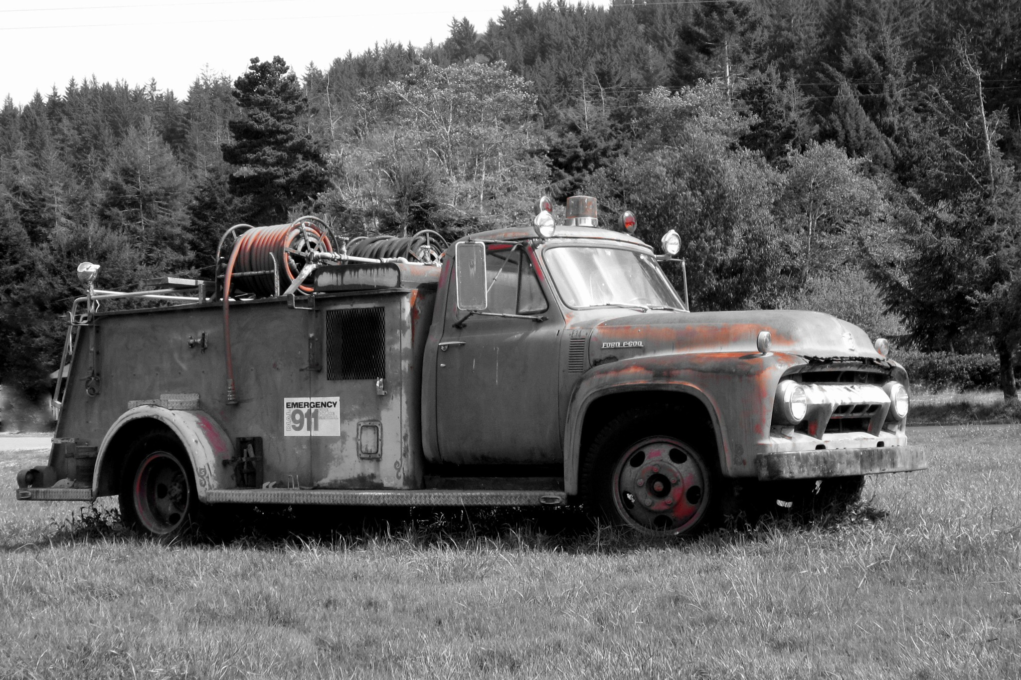 Fire Engine Red by Cathy Honke