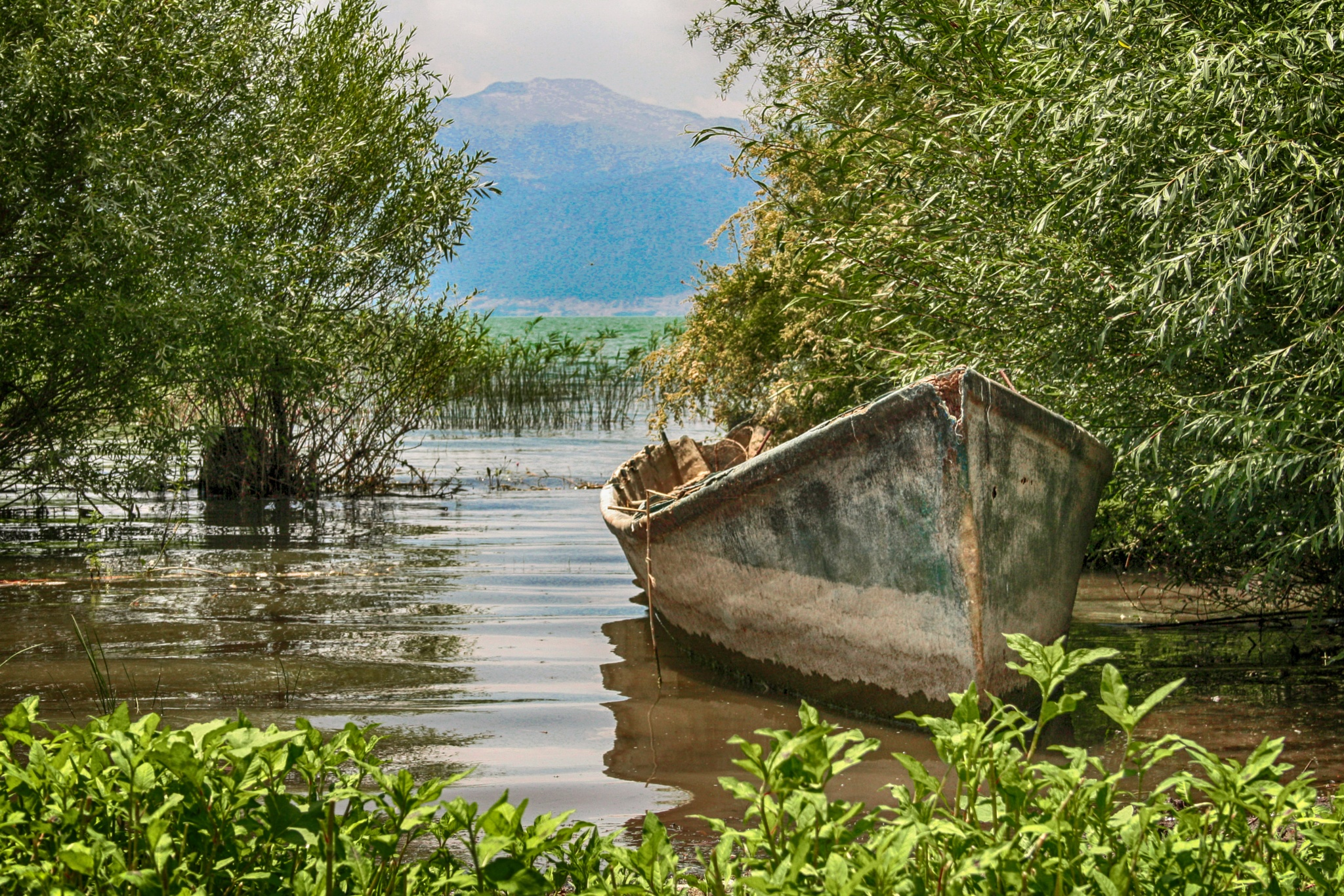 lake by Zafer Kara