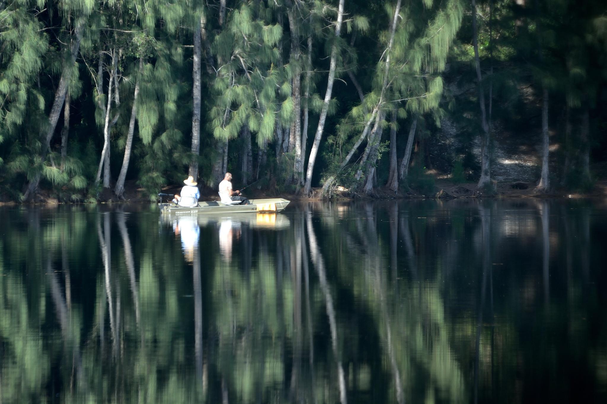 Reflections 3  by Frank J Garcia