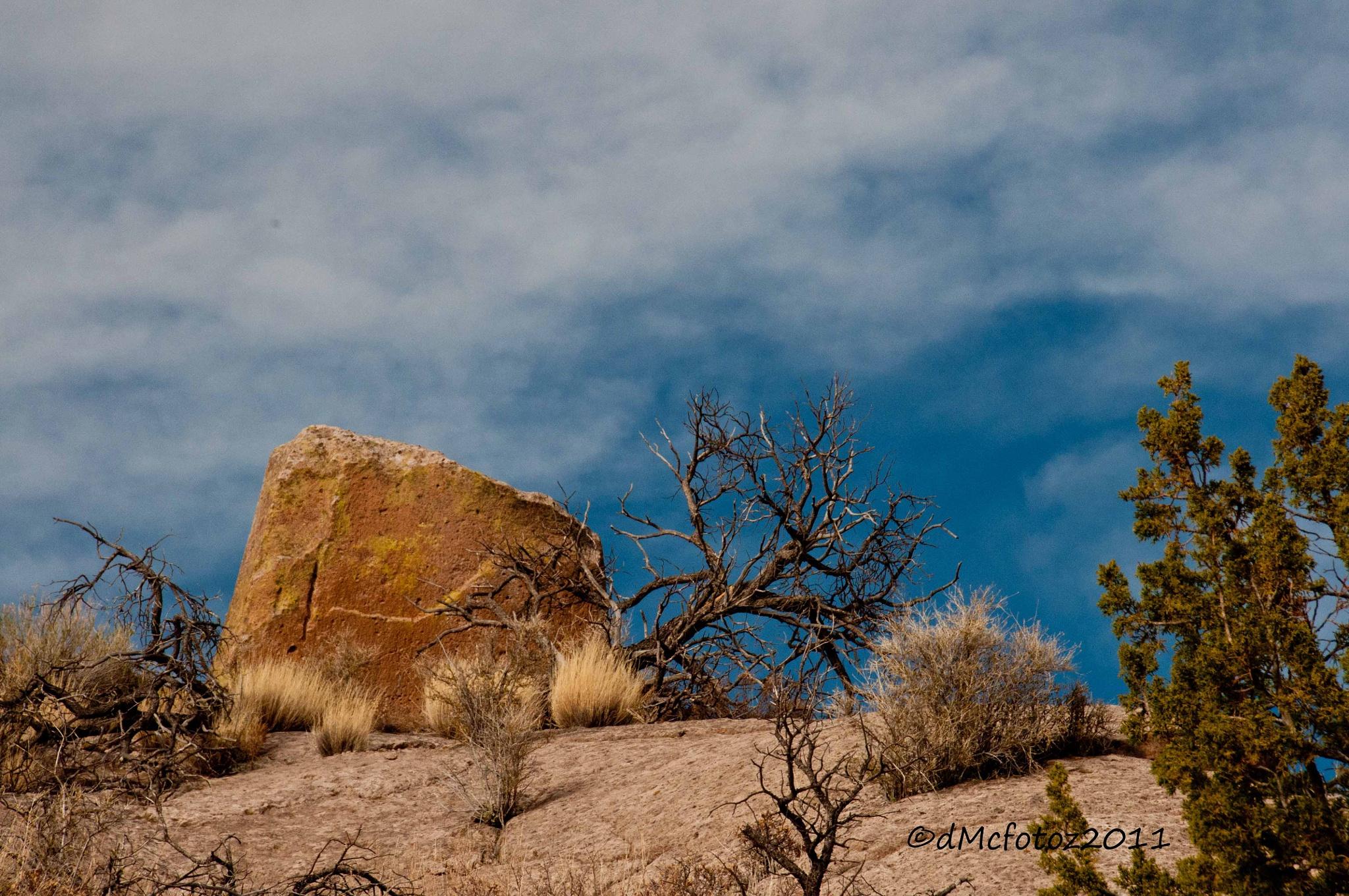 New Mexico by reddirtdiva