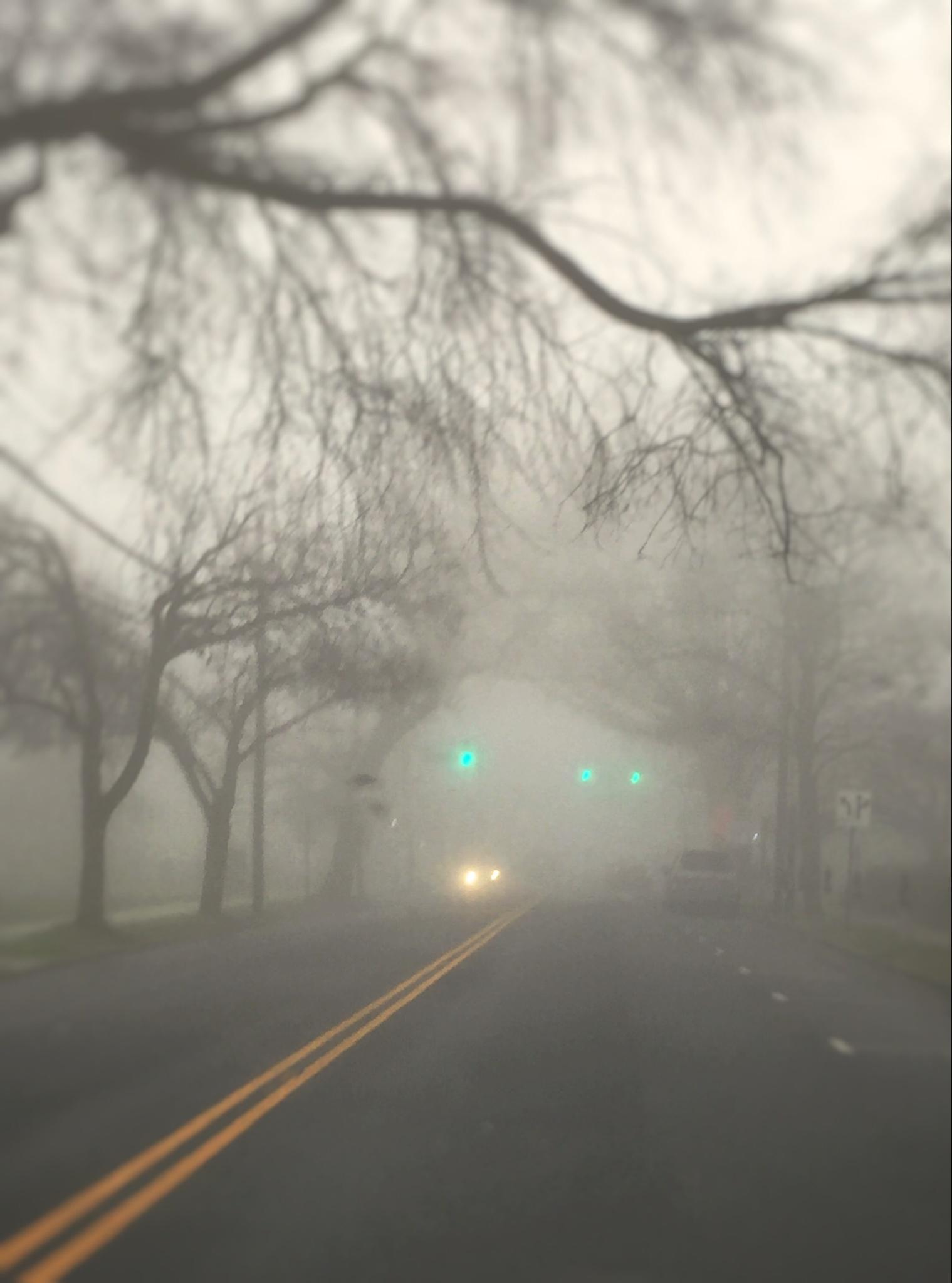 Foggy day in Summit! by lucyf
