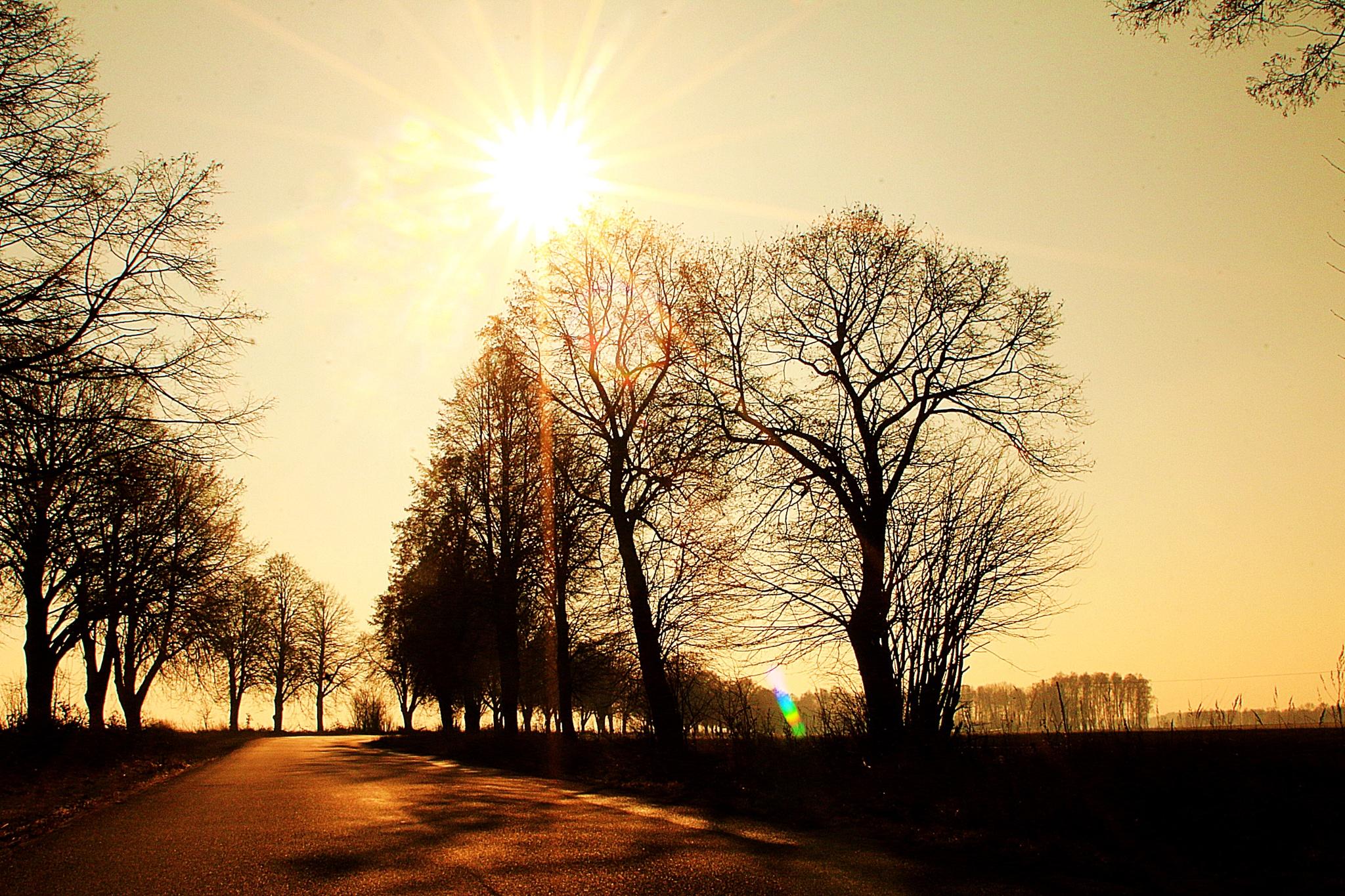 road to nowhere by JAKOKTO PAUKAS