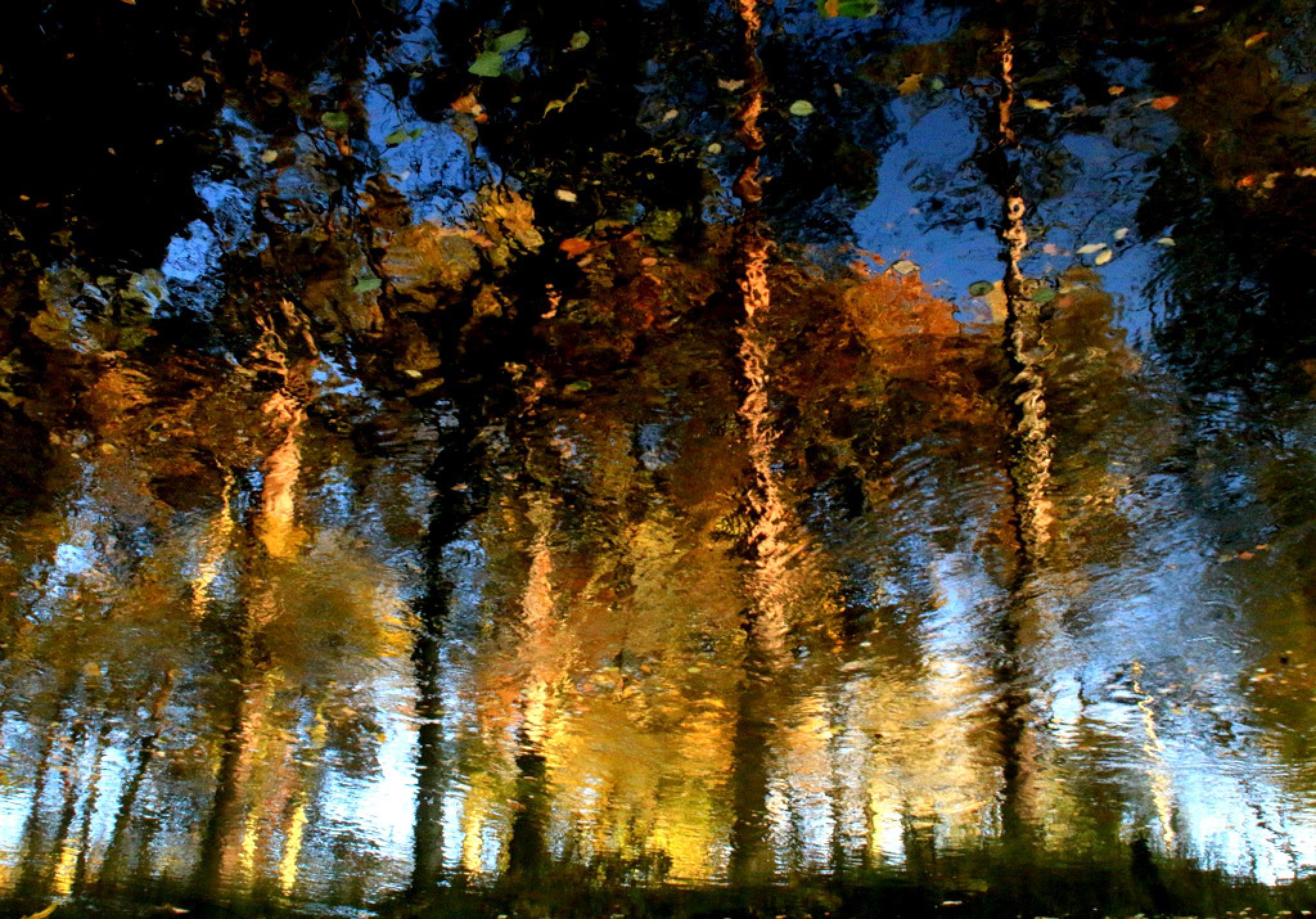 Photoimpressionism by JAKOKTO PAUKAS
