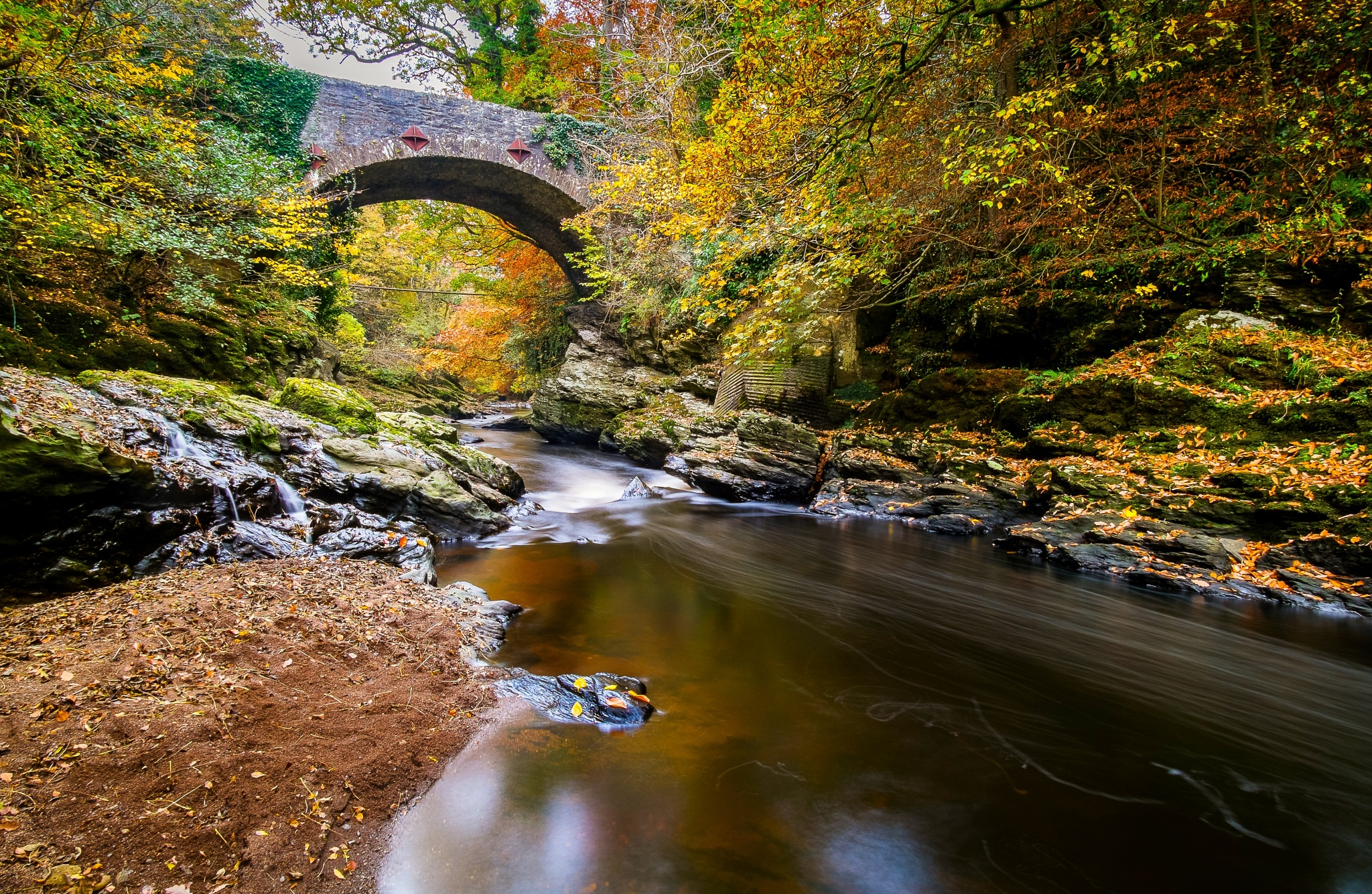 Autumn in the Roe valley by Lee Morrow
