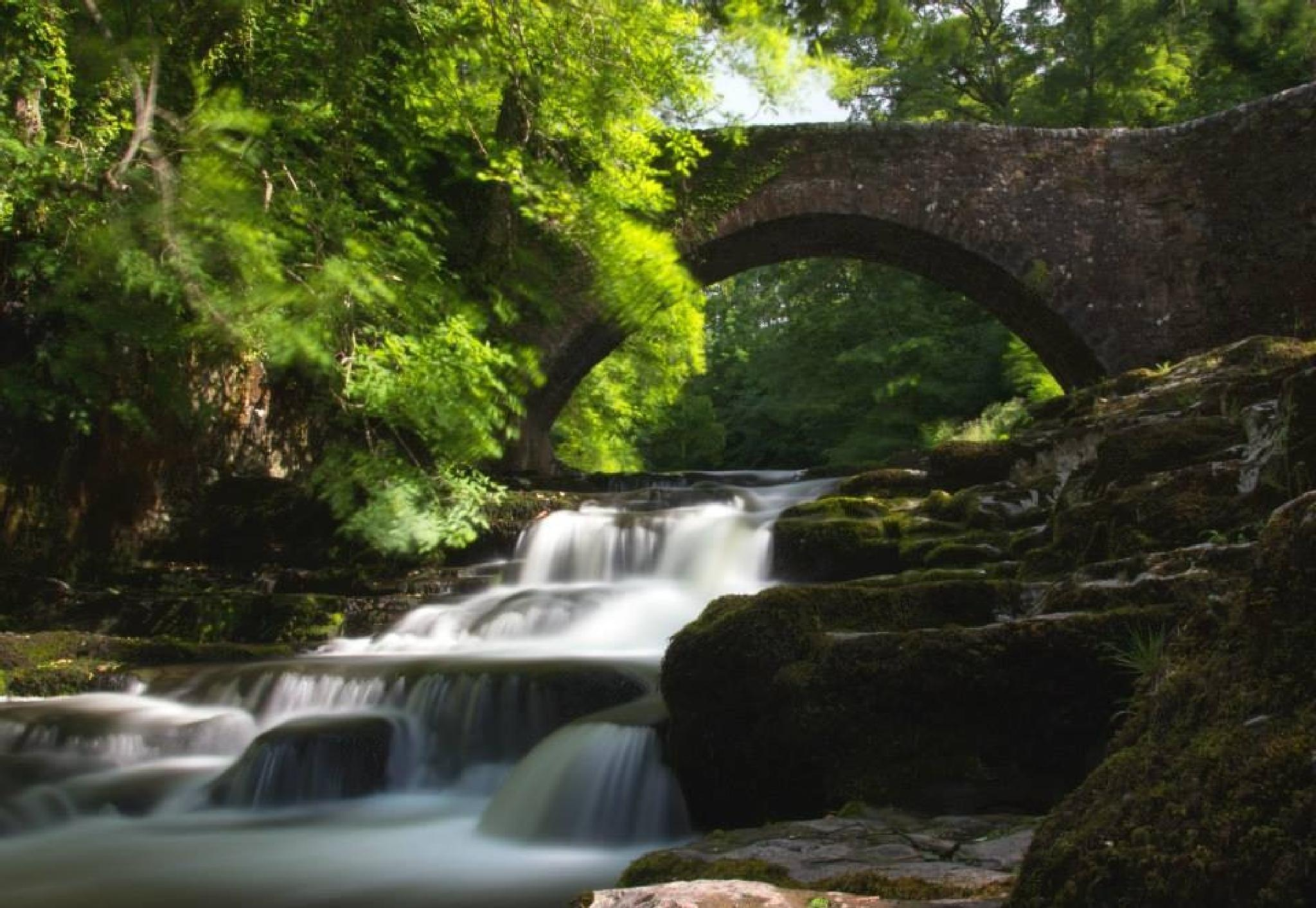 Cauldron Falls by carole carter
