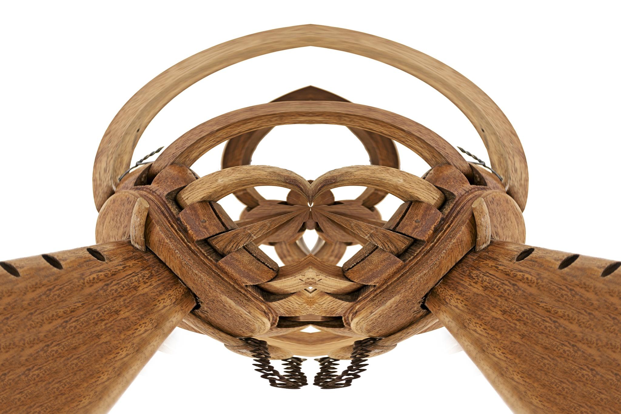 Wood - simetry by Warren Christopher Chirinos Pinedo