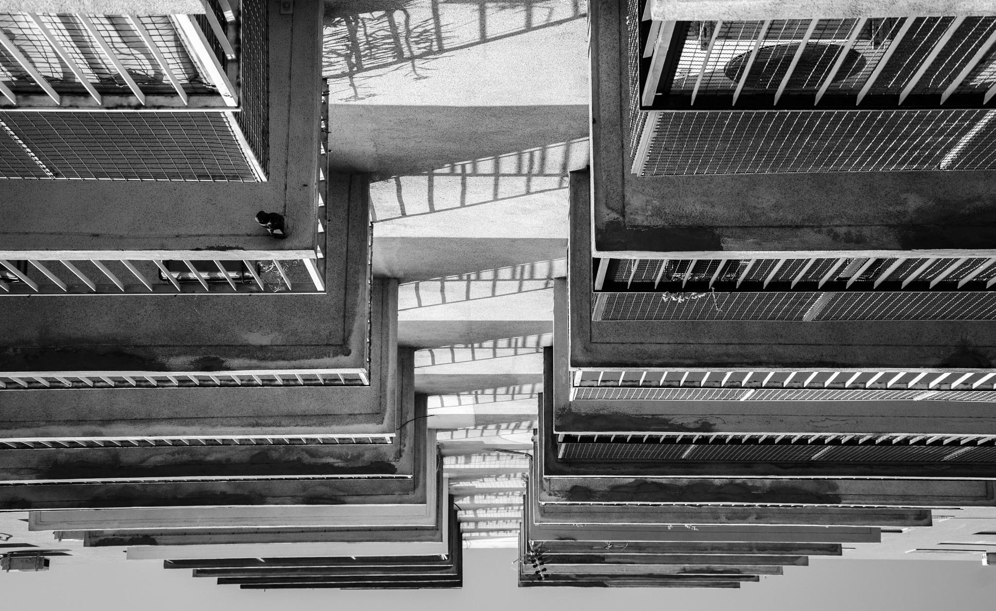 Photo in Black and White #edificio #simetrico #blanco y negro #nikon