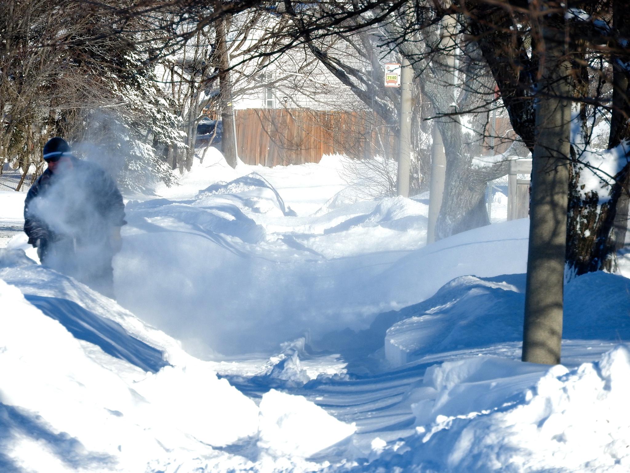 True Canadian winter day... by Lorraine Furmanic