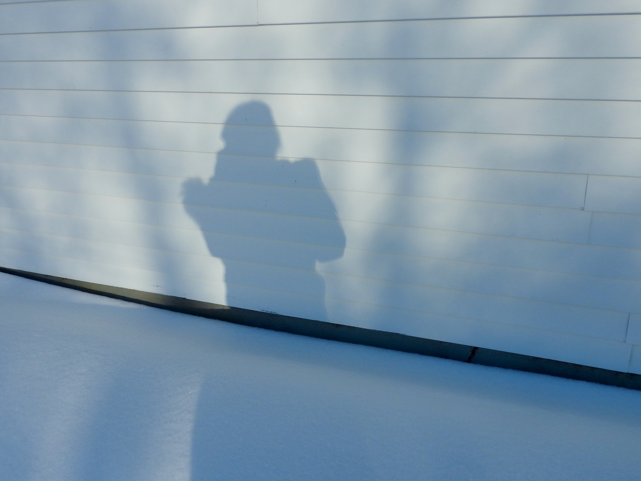 Me and my shadow :) by Lorraine Furmanic