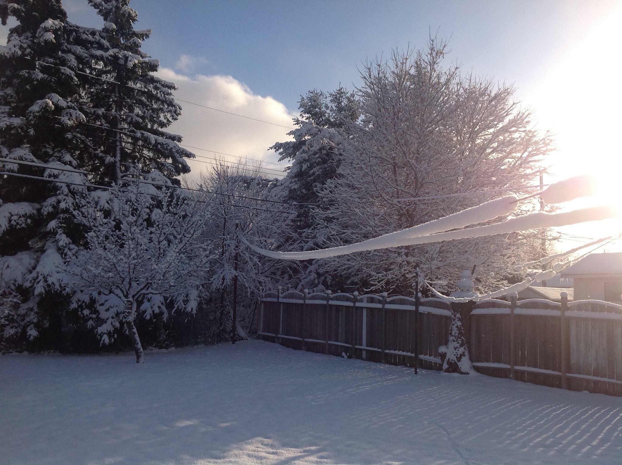 Winter Sparkles by Lorraine Furmanic