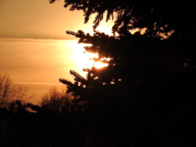 February sunset  by Lorraine Furmanic