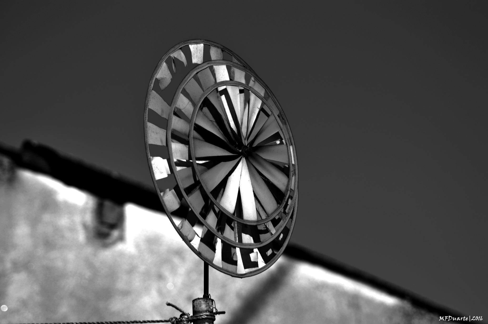 Moinho de vento ... by ManuelFilipeDuarte