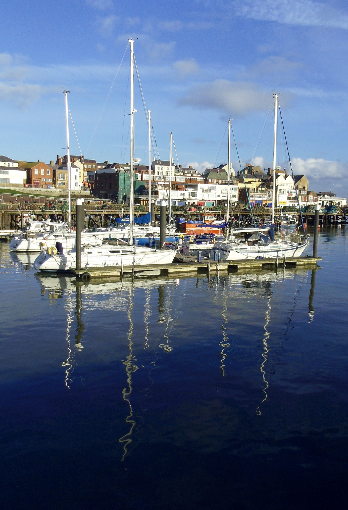 The Pleasure Harbour. by Tiny