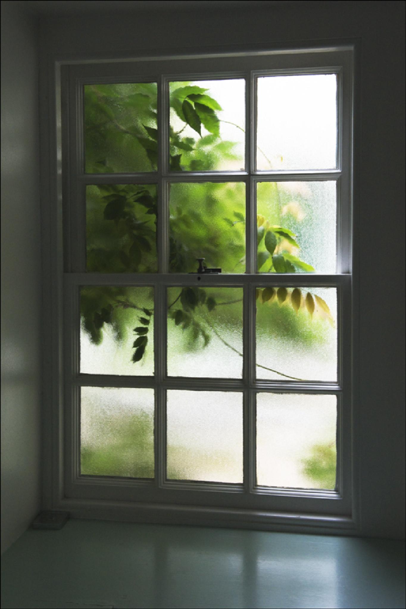 Window by FrankLockwood