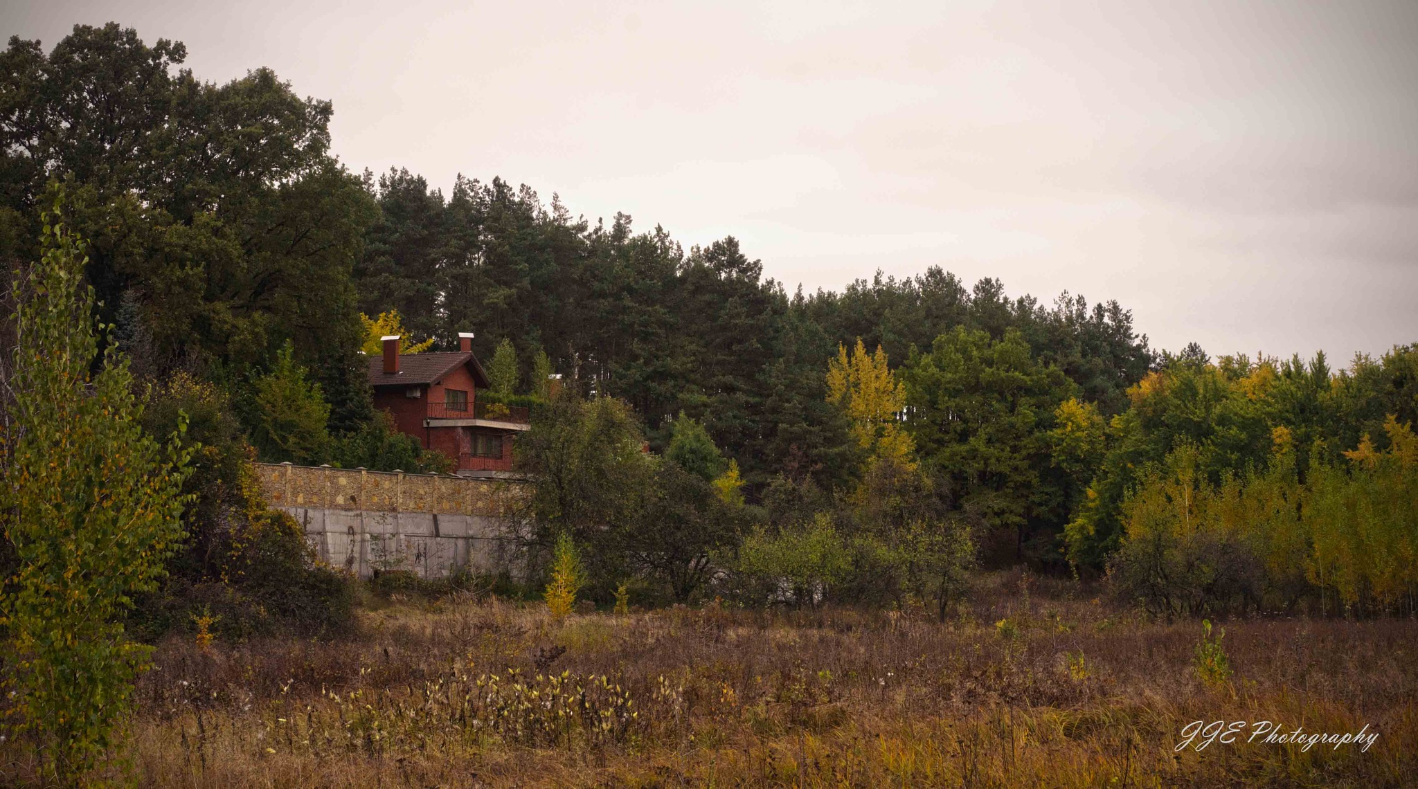 House in the forest by jassaj