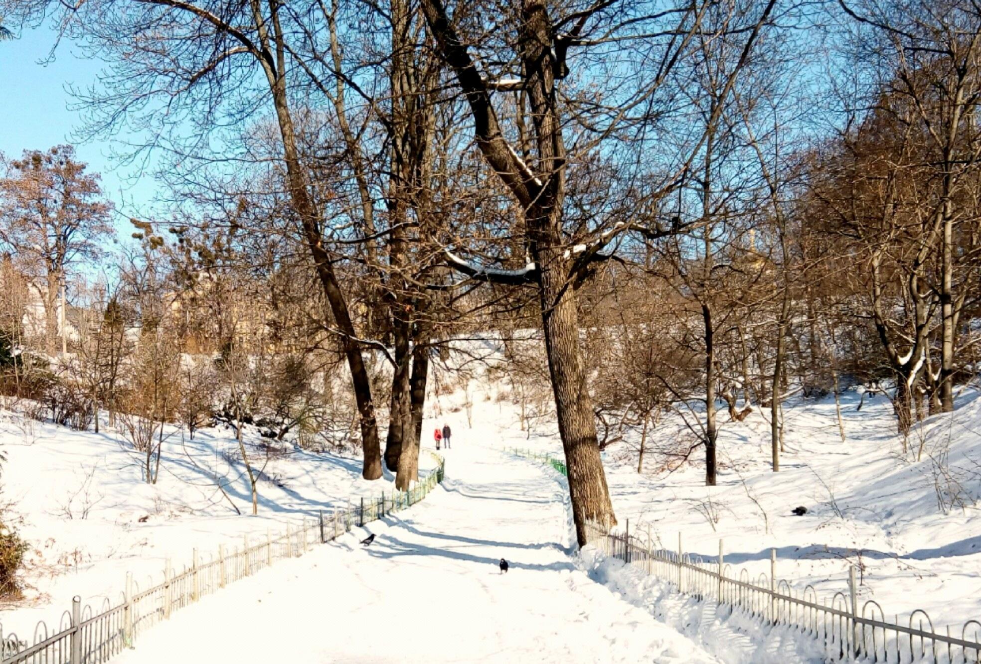 Bright cold day 2 by jassaj