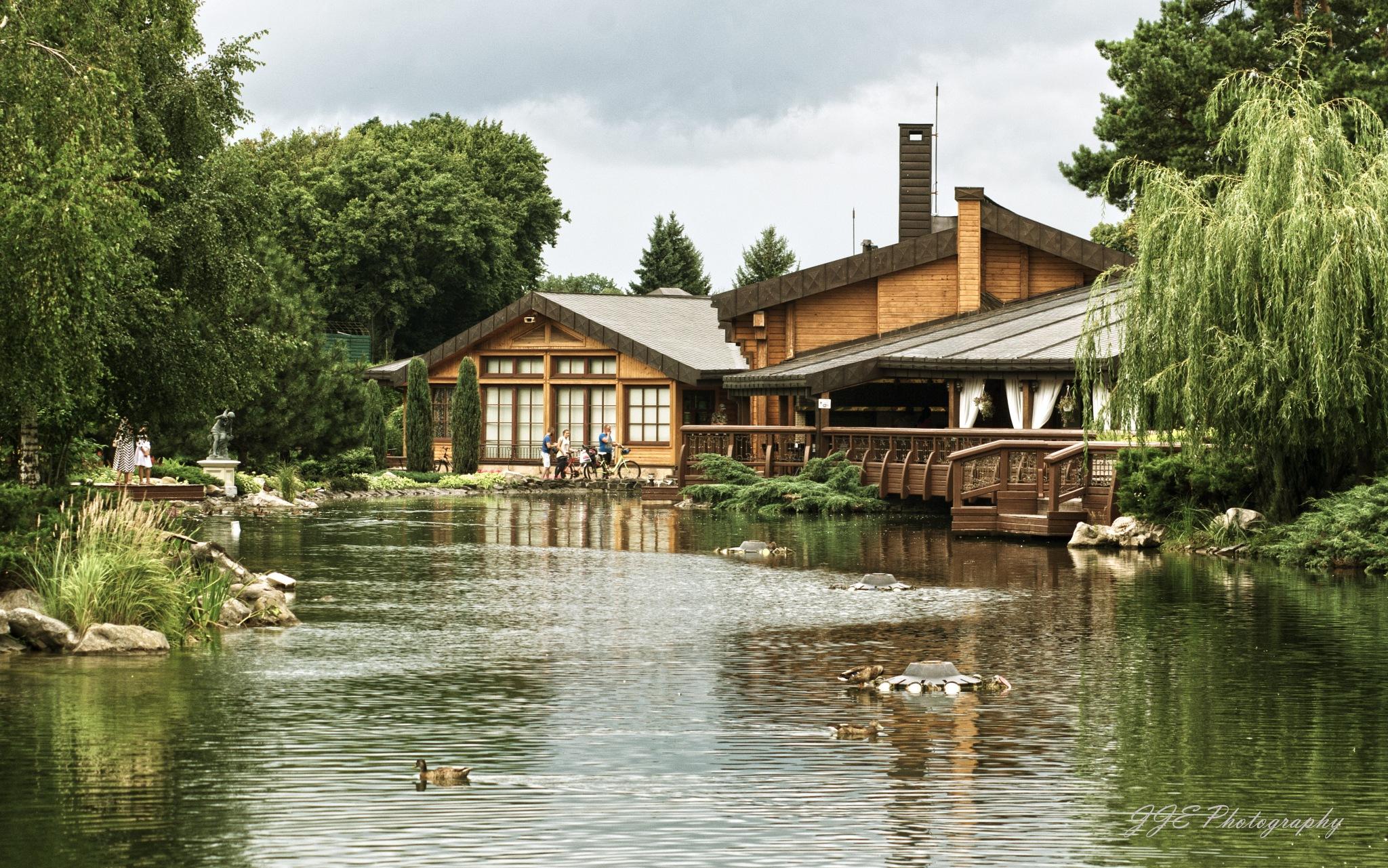 The house by the pond by jassaj