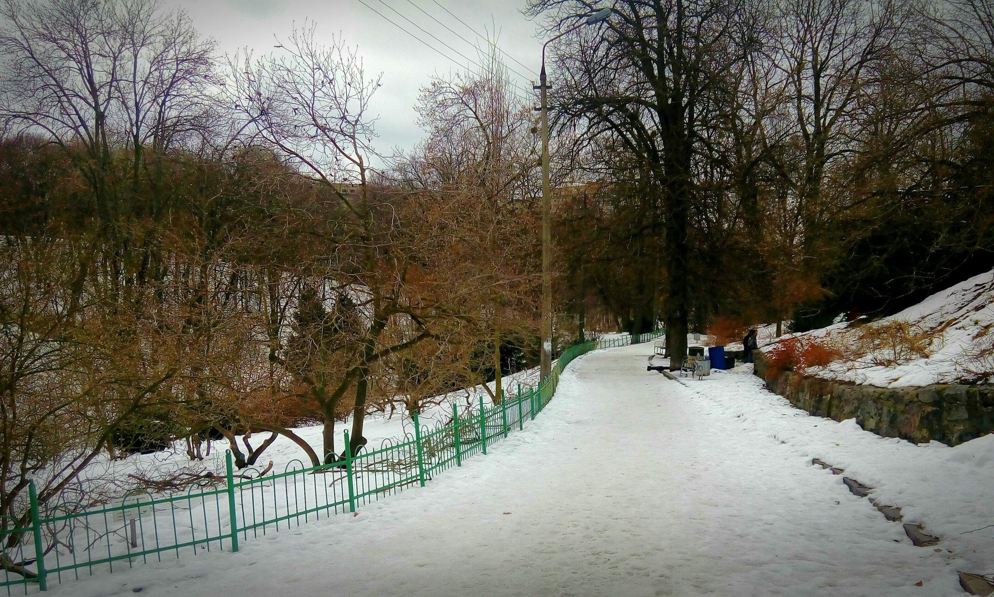 still rather cold by jassaj