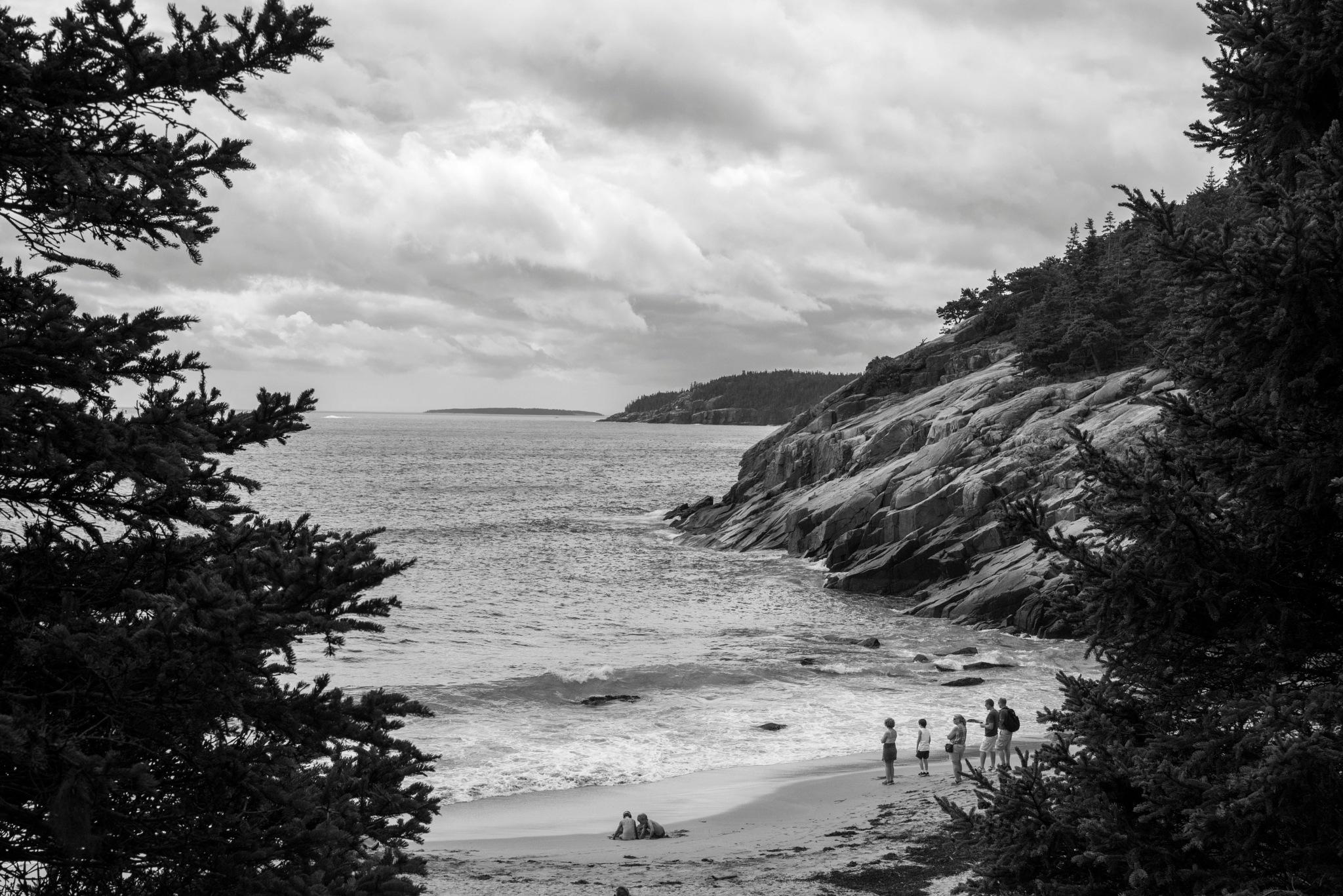 the beach.... by alextrusty